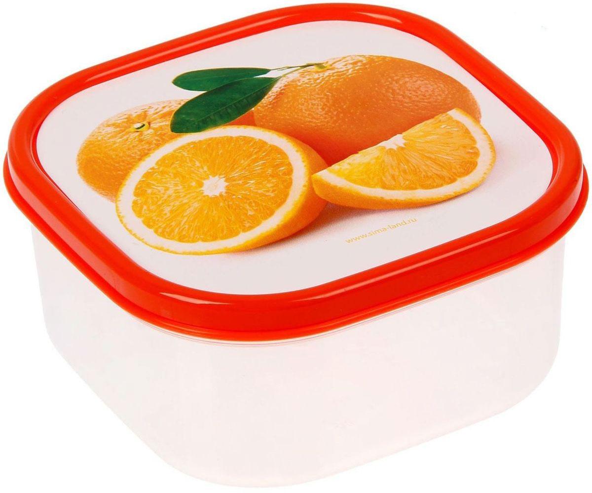 Ланч-бокс Доляна №5, квадратный, 400 мл21395599Если после вкусного обеда осталась еда, а насладиться трапезой хочется и на следующий день, ланч-бокс станет отличным решением данной проблемы!Такой контейнер является незаменимым предметом кухонной утвари, ведь у него много преимуществ:Простота ухода. Ланч-бокс достаточно промыть тёплой водой с небольшим количеством чистящего средства, и он снова готов к использованию.Вместительность. Большой выбор форм и объёма поможет разместить разнообразные продукты от сахара до супов.Эргономичность. Ланч-боксы очень легко хранить даже в самой маленькой кухне, так как их можно поставить один в другой по принципу матрёшки.Многофункциональность. Разнообразие цветов и форм делает возможным использование контейнеров не только на кухне, но и в других областях домашнего быта.Любители приготовления обеда на всю семью в большинстве случаев приобретают ланч-боксы наборами, так как это позволяет рассортировать продукты по всевозможным признакам. К тому же контейнеры среднего размера станут незаменимыми помощниками на работе: ведь что может быть приятнее, чем порадовать себя во время обеда прекрасной едой, заботливо сохранённой в контейнере?В качестве материала для изготовления используется пластик, что делает процесс ухода за контейнером ещё более эффективным. К каждому ланч-боксу в комплекте также прилагается крышка подходящего размера, это позволяет плотно и надёжно удерживать запах еды и упрощает процесс транспортировки.Однако рекомендуется соблюдать и меры предосторожности: не использовать пластиковые контейнеры в духовых шкафах и на открытом огне, а также не разогревать в микроволновых печах при закрытой крышке ланч-бокса. Соблюдение мер безопасности позволит продлить срок эксплуатации и сохранить отличный внешний вид изделия.Эргономичный дизайн и многофункциональность таких контейнеров — вот, что является причиной большой популярности данного предмета у каждой хозяйки. А в преддверии лета и дачного сезона такое приобретение позволит по