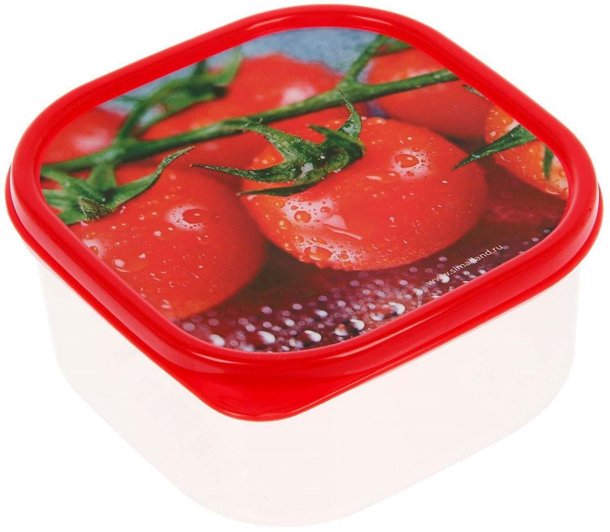 Ланч-бокс Доляна №4, квадратный, 450 млVT-1520(SR)Если после вкусного обеда осталась еда, а насладиться трапезой хочется и на следующий день, ланч-бокс станет отличным решением данной проблемы!Такой контейнер является незаменимым предметом кухонной утвари, ведь у него много преимуществ:Простота ухода. Ланч-бокс достаточно промыть тёплой водой с небольшим количеством чистящего средства, и он снова готов к использованию.Вместительность. Большой выбор форм и объёма поможет разместить разнообразные продукты от сахара до супов.Эргономичность. Ланч-боксы очень легко хранить даже в самой маленькой кухне, так как их можно поставить один в другой по принципу матрёшки.Многофункциональность. Разнообразие цветов и форм делает возможным использование контейнеров не только на кухне, но и в других областях домашнего быта.Любители приготовления обеда на всю семью в большинстве случаев приобретают ланч-боксы наборами, так как это позволяет рассортировать продукты по всевозможным признакам. К тому же контейнеры среднего размера станут незаменимыми помощниками на работе: ведь что может быть приятнее, чем порадовать себя во время обеда прекрасной едой, заботливо сохранённой в контейнере?В качестве материала для изготовления используется пластик, что делает процесс ухода за контейнером ещё более эффективным. К каждому ланч-боксу в комплекте также прилагается крышка подходящего размера, это позволяет плотно и надёжно удерживать запах еды и упрощает процесс транспортировки.Однако рекомендуется соблюдать и меры предосторожности: не использовать пластиковые контейнеры в духовых шкафах и на открытом огне, а также не разогревать в микроволновых печах при закрытой крышке ланч-бокса. Соблюдение мер безопасности позволит продлить срок эксплуатации и сохранить отличный внешний вид изделия.Эргономичный дизайн и многофункциональность таких контейнеров — вот, что является причиной большой популярности данного предмета у каждой хозяйки. А в преддверии лета и дачного сезона такое приобретение позволит