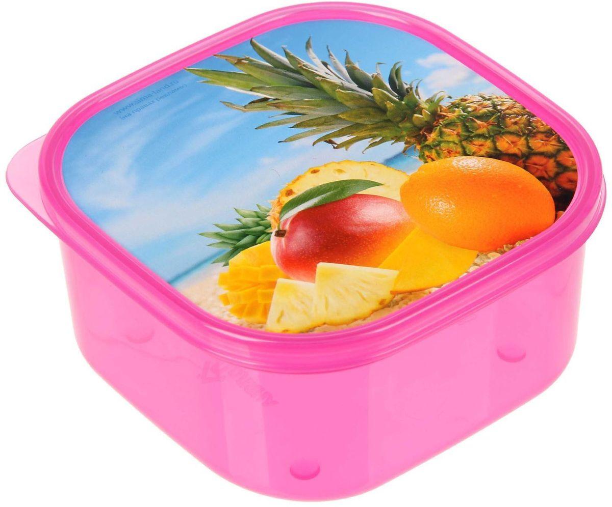 Ланч-бокс Доляна №22, квадратный, 700 мл115510Если после вкусного обеда осталась еда, а насладиться трапезой хочется и на следующий день, ланч-бокс станет отличным решением данной проблемы!Такой контейнер является незаменимым предметом кухонной утвари, ведь у него много преимуществ:Простота ухода. Ланч-бокс достаточно промыть тёплой водой с небольшим количеством чистящего средства, и он снова готов к использованию.Вместительность. Большой выбор форм и объёма поможет разместить разнообразные продукты от сахара до супов.Эргономичность. Ланч-боксы очень легко хранить даже в самой маленькой кухне, так как их можно поставить один в другой по принципу матрёшки.Многофункциональность. Разнообразие цветов и форм делает возможным использование контейнеров не только на кухне, но и в других областях домашнего быта.Любители приготовления обеда на всю семью в большинстве случаев приобретают ланч-боксы наборами, так как это позволяет рассортировать продукты по всевозможным признакам. К тому же контейнеры среднего размера станут незаменимыми помощниками на работе: ведь что может быть приятнее, чем порадовать себя во время обеда прекрасной едой, заботливо сохранённой в контейнере?В качестве материала для изготовления используется пластик, что делает процесс ухода за контейнером ещё более эффективным. К каждому ланч-боксу в комплекте также прилагается крышка подходящего размера, это позволяет плотно и надёжно удерживать запах еды и упрощает процесс транспортировки.Однако рекомендуется соблюдать и меры предосторожности: не использовать пластиковые контейнеры в духовых шкафах и на открытом огне, а также не разогревать в микроволновых печах при закрытой крышке ланч-бокса. Соблюдение мер безопасности позволит продлить срок эксплуатации и сохранить отличный внешний вид изделия.Эргономичный дизайн и многофункциональность таких контейнеров — вот, что является причиной большой популярности данного предмета у каждой хозяйки. А в преддверии лета и дачного сезона такое приобретение позволит под