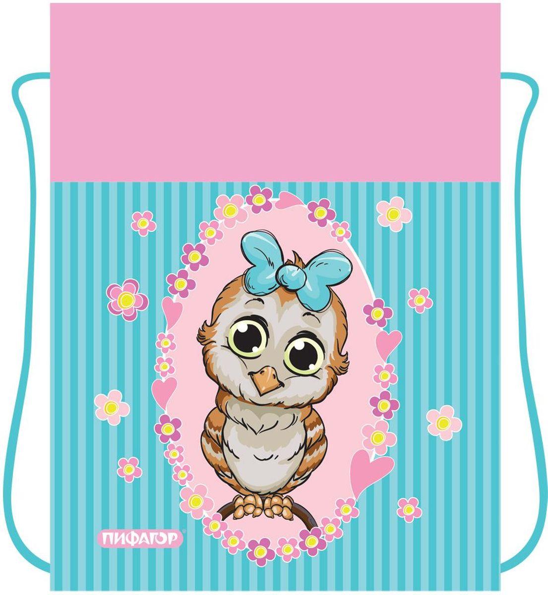 Пифагор Сумка для детской обуви Сова цвет голубой730396Сумка для обуви Пифагор предназначена для детей 7-10 лет. Вместительная сумка затягивается шнурком. Яркий тематический принт поможет школьнику проявить индивидуальность.Водоотталкивающая пропитка ткани.