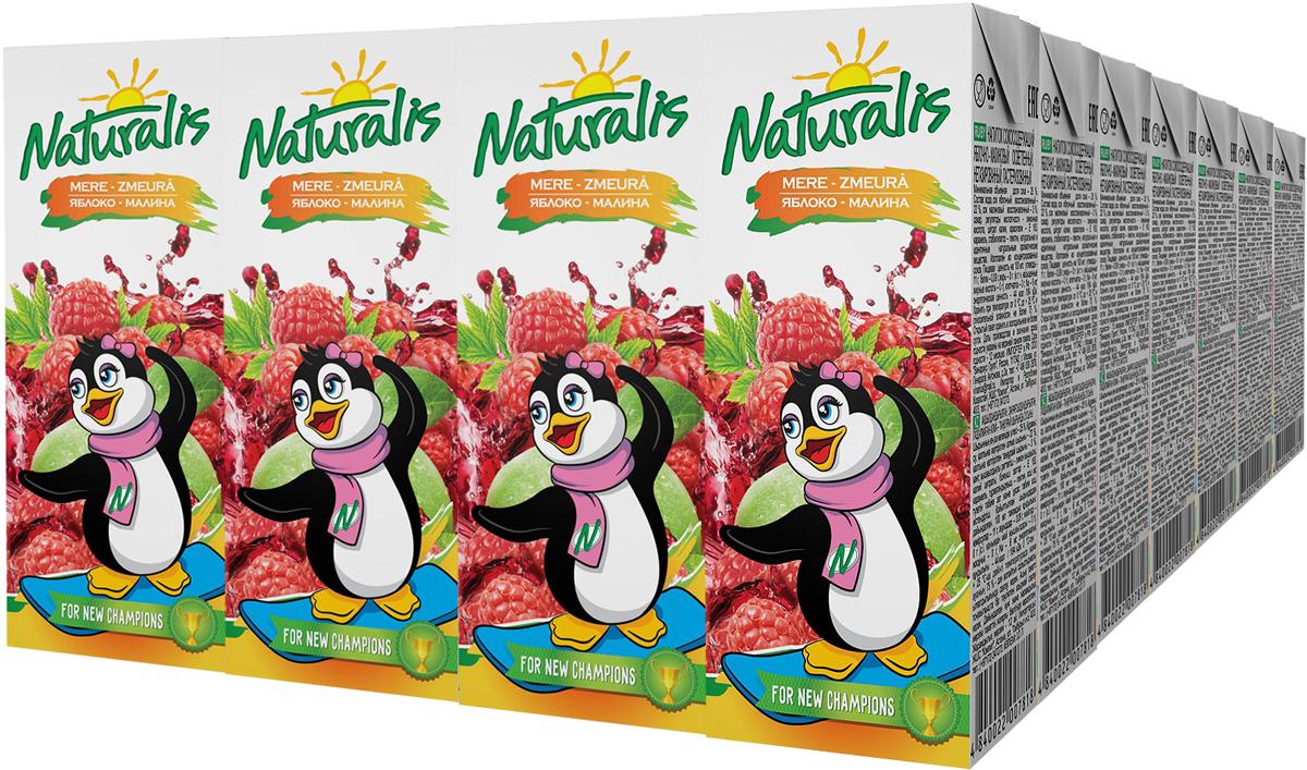 Naturalis напиток сокосодержащий яблочно-малиновый, 28 шт по 0,2 л0120710Яблочно-малиновый нектар Naturalis - это отличный вкус и польза для здоровья. Малина - единственная ягода, которая не утрачивает своих целебных свойств при варке, т.е. содержит и витамин С, и А, некоторые пектиновые вещества. Naturalis в пакете 200 мл с трубочкой - это порционная упаковка, которая понравится вашему ребенку. Перед употреблением взбалтывать.