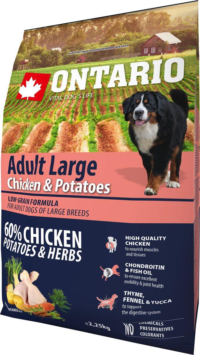 Корм сухой Ontario Large, для собак крупных пород, с курицей и картофелем, 2,25 кг0120710Формула с низким содержанием зерновых для собак крупных пород. Полноценный корм супер-премиум класса для собак.Сбалансированный состав для здорового функционирования всего организма. Для собак крупных пород особенно важно здоровье опорно-двигательного аппарата, поэтому корм обогащен хондроитином и рыбьим жиром для поддержания превосходной подвижности и здоровья суставов. Высокое содержание белка важно для правильно формирования мышечной ткани. Пивные дрожжи содержат витамины группы В и ферменты, способствуют росту полезных бактерий в кишечнике. Дрожжи улучшают состояние кожи и шерсти животных.Лососевый жир богат незаменимыми жирными кислотами Омега 3, оказывающими благотворное влияние на все органы и системы организма, особенно на шерсть животных. Омега 3 и Омега 6 жирные кислоты являются важными компонентами для поддержки функций сердца. Яблоки богаты клетчаткой (пектином), способствующей пищеварению и выводящей токсины из кишечника, а также являются источником витаминов и антиоксидантов.Специальная смесь трав и специй, особенно аниса, гвоздики и морских водорослей, способствует поддержанию гигиены полости рта и здоровья зубов.Маннанолигосахариды естественным образом поддерживают работу кишечника и улучшают общее состояние здоровья животных.Рекомендации по кормлению: Давать ком сухим или слегка увлажненным. Всегда обеспечивайте собаке доступ к свежей воде. Количество корма, ежедневно необходимое собаке, зависит от окружающих условий, размера, возраста и уровня активности. Рекомендуемая дневная норма приведена в таблице. Для поддержания надлежащего состояния, следите, чтобы ваша собака была физически активна и не перекармливайте ее.Состав: дегидрированная курица (30%), картофельные хлопья (25%), рис, сушеные яблоки, куриный жир, гидролизированный куриный белок (5%), пивные дрожжи, рыбий жир, сушеная морковь, глюкозамин сульфат (310 мг/кг), хондроитин сульфат(190 мг/кг), маннанол