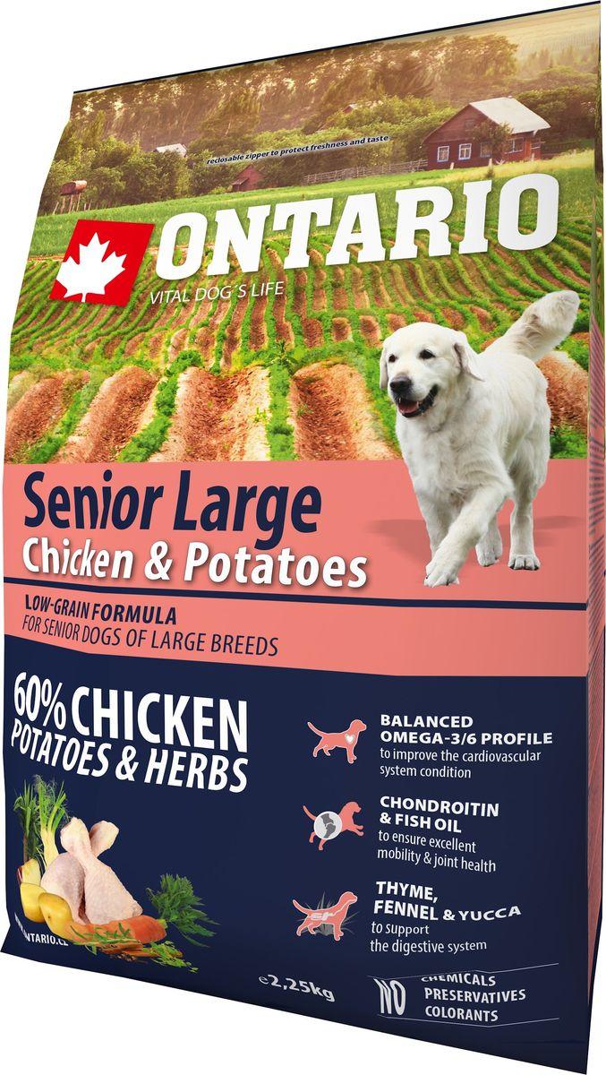Корм сухой Ontario Senior Large для пожилых собак крупных пород, с курицей и картофелем, 2,25 кг65072Комплексный сухой корм супер-премиум класса Ontario Senior Large имеет формулу с низким содержанием зерновых. Предназначен для пожилых собак крупных пород (старше 8 лет).Сбалансированный состав для здорового функционирования всего организма. Для собак крупных пород особенно важно здоровье опорно-двигательного аппарата, поэтому корм обогащен хондроитином и рыбьим жиром для поддержания превосходной подвижности и здоровья суставов. Высокое содержание белка важно для правильного формирования мышечной ткани. Пивные дрожжи содержат витамины группы В и ферменты, способствуют росту полезных бактерий в кишечнике, улучшают состояние кожи и шерсти животных.Лососевый жир богат незаменимыми жирными кислотами Омега-3, оказывающими благотворное влияние на все органы и системы организма, особенно на шерсть животных. Омега-3 и Омега-6 жирные кислоты являются важными компонентами для поддержки функций сердца. Яблоки богаты клетчаткой (пектином), способствующей пищеварению и выводящей токсины из кишечника, а также являются источником витаминов и антиоксидантов.Специальная смесь трав и специй, особенно аниса, гвоздики и морских водорослей, способствует поддержанию гигиены полости рта и здоровья зубов.Маннанолигосахариды естественным образом поддерживают работу кишечника и улучшают общее состояние здоровья животных.Состав: дегидрированная курица (29%), картофельные хлопья (28%), рис, сушеные яблоки, куриный жир, пивные дрожжи, гидролизированный куриный белок (3%), рыбий жир, сушеная морковь, глюкозамин сульфат (310 мг/кг), хондроитин сульфат(190 мг/кг), маннанолигосахариды (180 мг/кг), фруктоолигосахариды (120 мг/кг), смесь морских водорослей, фенхель, тимьян, корица, анис, гвоздика, розмарин и юкка (120 мг/кг).Гарантированный анализ: белок 25%, жир 11%, влага 10%, зола 6%, клетчатка 3,2%, кальций 1,4%, фосфор 1%, натрий 0,2%, магний 0,09%.Добавки: витамин A (E672) 20 000 IU, витамин D3 