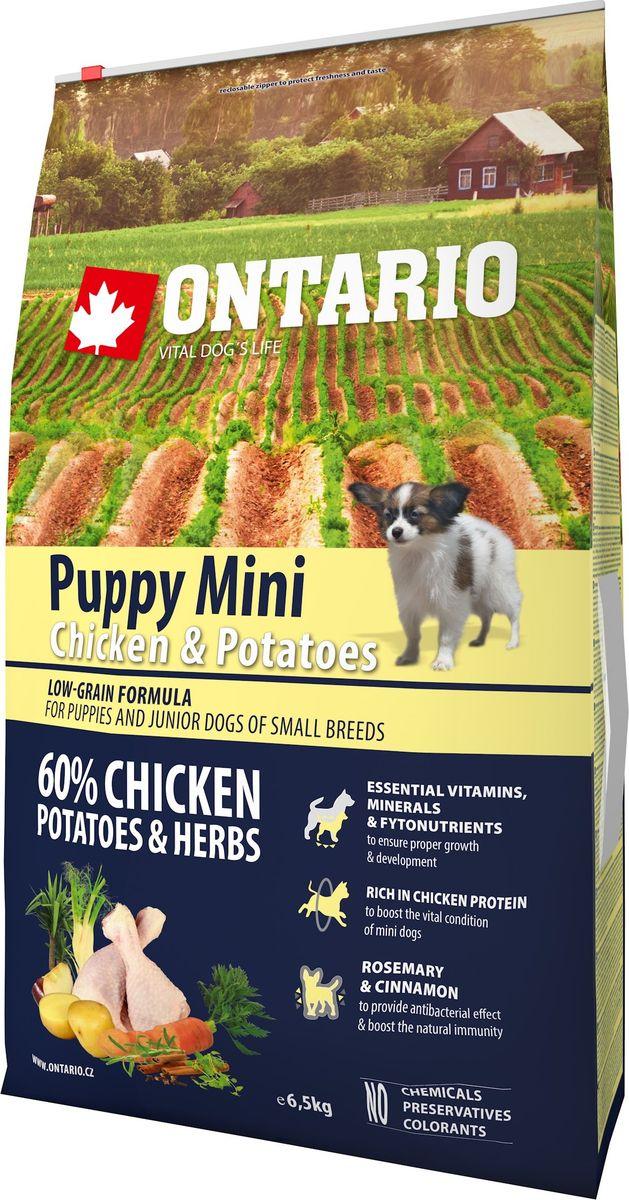 Корм сухой Ontario Puppy Mini, для щенков малых пород, с курицей и картофелем, 6,5 кг0120710Формула с низким содержанием зерновых для щенков и молодых собак малых пород (1-12 месяцев). Полноценный корм супер-премиум класса для собак. Сбалансированный состав для здорового функционирования и развития всего организма. Корм содержит широкий набор витаминов и минералов, способствующих здоровому росту и развитию щенков. Высокое содержание белка из мяса курицы имеет важное значение для правильного формирования мышечной ткани.Пивные дрожжи содержат витамины группы В и ферменты, способствуют росту полезных бактерий в кишечнике. Дрожжи улучшают состояние кожи и шерсти животных.Лососевый жир богат незаменимыми жирными кислотами Омега 3, оказывающими благотворное влияние на все органы и системы организма, особенно на шерсть животных. Омега 3 и Омега 6 жирные кислоты являются важными компонентами для поддержки функций сердца. Яблоки богаты клетчаткой (пектином), способствующей пищеварению и выводящей токсины из кишечника, а также являются источником витаминов и антиоксидантов. Специальная смесь трав и специй, особенно аниса, гвоздики и морских водорослей, способствует поддержанию гигиены полости рта и здоровья зубов.Маннанолигосахариды естественным образом поддерживают работу кишечника и улучшают общее состояние здоровья животных.Фруктоолигосахариды стимулируют рост нормальной микрофлоры кишечника (лакто- и бифидобактерий); подавляют развитие патогенных бактерий, предупреждают возникновение дисбактериоза, улучшают переваривание и поглощение питательных веществ.Рекомендации по кормлению: Давать ком сухим или слегка увлажненным. Всегда обеспечивайте собаке доступ к свежей воде. Количество корма, ежедневно необходимое собаке, зависит от окружающих условий, размера, возраста и уровня активности. Рекомендуемая дневная норма приведена в таблице. Для поддержания надлежащего состояния, следите, чтобы ваша собака была физически активна и не перекармливайте ее.Состав: дегидрированная кури