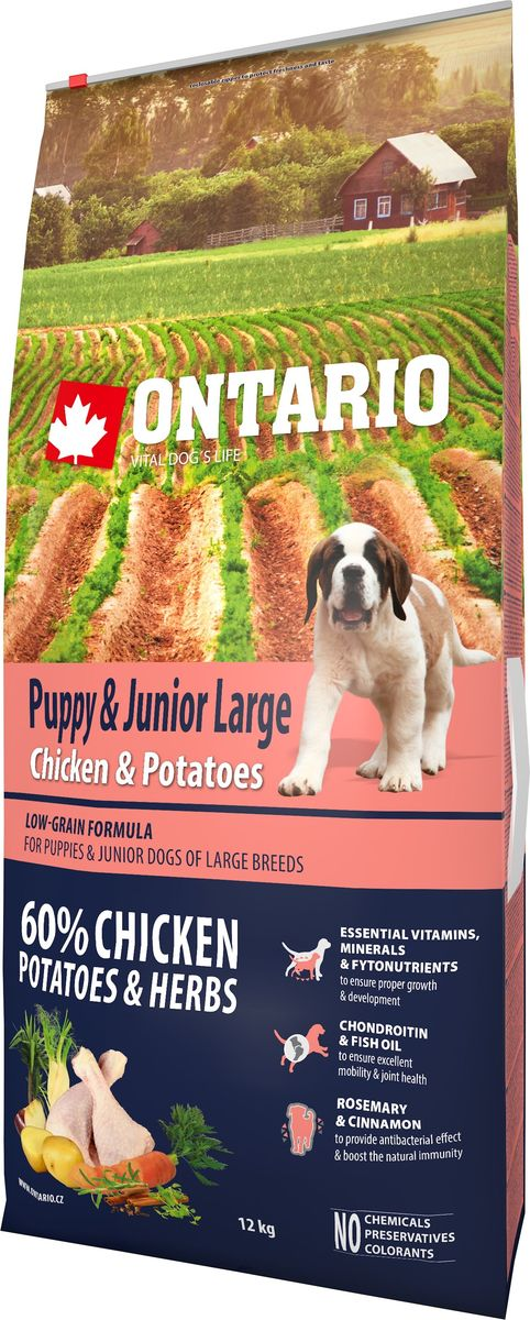 Корм сухой Ontario Puppy & Junior Large, для щенков крупных пород, с курицей и картофелем, 12 кг0120710Формула с низким содержанием зерновых для щенков и молодых собак крупных пород (1-24 месяцев). Полноценный корм супер-премиум класса для собак.Сбалансированный состав для здорового функционирования и развития всего организма. Для собак крупных пород особенно важно здоровье опорно-двигательного аппарата, поэтому корм обогащен хондроитином и рыбьим жиром для поддержания превосходной подвижности и здоровья суставов.Корм содержит широкий набор витаминов и минералов, способствующих здоровому росту и развитию щенков. Высокое содержание белка имеет важное значение для правильного формирования мышечной ткани. Пивные дрожжи содержат витамины группы В и ферменты, способствуют росту полезных бактерий в кишечнике. Дрожжи улучшают состояние кожи и шерсти животных.Лососевый жир богат незаменимыми жирными кислотами Омега 3, оказывающими благотворное влияние на все органы и системы организма, особенно на шерсть животных. Омега 3 и Омега 6 жирные кислоты являются важными компонентами для поддержки функций сердца. Яблоки богаты клетчаткой (пектином), способствующей пищеварению и выводящей токсины из кишечника, а также являются источником витаминов и антиоксидантов.Специальная смесь трав и специй, особенно аниса, гвоздики и морских водорослей, способствует поддержанию гигиены полости рта и здоровья зубов.Маннанолигосахариды естественным образом поддерживают работу кишечника и улучшают общее состояние здоровья животных.Рекомендации по кормлению: Давать ком сухим или слегка увлажненным. Всегда обеспечивайте собаке доступ к свежей воде. Количество корма, ежедневно необходимое собаке, зависит от окружающих условий, размера, возраста и уровня активности. Рекомендуемая дневная норма приведена в таблице. Для поддержания надлежащего состояния, следите, чтобы ваша собака была физически активна и не перекармливайте ее.Состав: дегидрированная курица (32%), картофельные хлопья (22%), рис, сушены