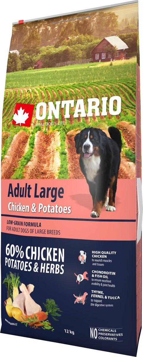Корм сухой Ontario Adult Large для собак крупных пород, с курицей и картофелем, 12 кг46635Полноценный сухой корм супер-премиум класса Ontario Adult Large имеет формулу с низким содержанием зерновых. Предназначен для собак крупных пород. Сбалансированный состав для здорового функционирования всего организма. Для собак крупных пород особенно важно здоровье опорно-двигательного аппарата, поэтому корм обогащен хондроитином и рыбьим жиром для поддержания превосходной подвижности и здоровья суставов. Высокое содержание белка важно для правильно формирования мышечной ткани. Пивные дрожжи содержат витамины группы В и ферменты, способствуют росту полезных бактерий в кишечнике, улучшают состояние кожи и шерсти животных.Лососевый жир богат незаменимыми жирными кислотами Омега-3, оказывающими благотворное влияние на все органы и системы организма, особенно на шерсть животных. Омега-3 и Омега-6 жирные кислоты являются важными компонентами для поддержки функций сердца. Яблоки богаты клетчаткой (пектином), способствующей пищеварению и выводящей токсины из кишечника, а также являются источником витаминов и антиоксидантов.Специальная смесь трав и специй, особенно аниса, гвоздики и морских водорослей, способствует поддержанию гигиены полости рта и здоровья зубов.Маннанолигосахариды естественным образом поддерживают работу кишечника и улучшают общее состояние здоровья животных.Состав: дегидрированная курица (30%), картофельные хлопья (25%), рис, сушеные яблоки, куриный жир, гидролизированный куриный белок (5%), пивные дрожжи, рыбий жир, сушеная морковь, глюкозамин сульфат (310 мг/кг), хондроитин сульфат(190 мг/кг), маннанолигосахариды (180 мг/кг), фруктоолигосахариды (120 мг/кг), смесь морских водорослей, фенхель, тимьян, корица, анис, гвоздика, розмарин и юкка (120 мг/кг).Гарантированный анализ: белок 26%, жир 14%, влага 10%, зола 6,2%, клетчатка 2,8%, кальций 1,4%, фосфор 1,1%, натрий 0,2%, магний 0,09%. Добавки: витамин A (E672) 20 000 IU, витамин D3 (E671) 1 400 IU, витамин E (аль