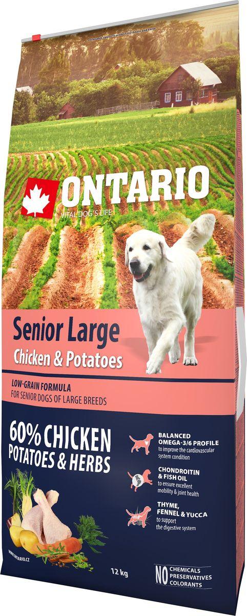 Корм сухой Ontario Senior Large, для пожилых собак крупных пород, с курицей и картофелем, 12 кг0120710Формула с низким содержанием зерновых для пожилых собак крупных пород (старше 8 лет) Комплексный корм супер-премиум класса для собак.Сбалансированный состав для здорового функционирования всего организма. Для собак крупных пород особенно важно здоровье опорно-двигательного аппарата, поэтому корм обогащен хондроитином и рыбьим жиром для поддержания превосходной подвижности и здоровья суставов. Высокое содержание белка важно для правильно формирования мышечной ткани. Пивные дрожжи содержат витамины группы В и ферменты, способствуют росту полезных бактерий в кишечнике. Дрожжи улучшают состояние кожи и шерсти животных.Лососевый жир богат незаменимыми жирными кислотами Омега 3, оказывающими благотворное влияние на все органы и системы организма, особенно на шерсть животных. Омега 3 и Омега 6 жирные кислоты являются важными компонентами для поддержки функций сердца. Яблоки богаты клетчаткой (пектином), способствующей пищеварению и выводящей токсины из кишечника, а также являются источником витаминов и антиоксидантов.Специальная смесь трав и специй, особенно аниса, гвоздики и морских водорослей, способствует поддержанию гигиены полости рта и здоровья зубов.Маннанолигосахариды естественным образом поддерживают работу кишечника и улучшают общее состояние здоровья животных.Рекомендации по кормлению: Давать ком сухим или слегка увлажненным. Всегда обеспечивайте собаке доступ к свежей воде. Количество корма, ежедневно необходимое собаке, зависит от окружающих условий, размера, возраста и уровня активности. Рекомендуемая дневная норма приведена в таблице. Для поддержания надлежащего состояния, следите, чтобы ваша собака была физически активна и не перекармливайте ее.Состав: дегидрированная курица (29%), картофельные хлопья (28%), рис, сушеные яблоки, куриный жир, пивные дрожжи, гидролизированный куриный белок (3%), рыбий жир, сушеная морковь, глюкозамин сульфат (310 мг/кг), хонд