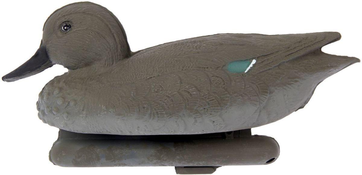 Фигура подсадная Чирок-трескунок. Утка1216291Подсадная фигура Чирок-трескунок. Утка выполнена из пластика, прошедшего специальную обработку, и покрыта антибликовыми красками. Материал отлично держится на воде и не крошится. Изделие имеет натуральную матовую окраску. Подсадное чучело часто используется для успешной охоты на утку, в основном на водоеме, в местах с хорошим обзором вокруг. Просто поместите его в место естественного обитания птицы, например, на воду или же в траву и примените манок. Не забудьте позаботиться о маскировке. Реалистичная подсадная фигура плюс духовой манок - и удачная охота обеспечена. Такая фигура также может использоваться для ландшафтного декора на дачном участке.