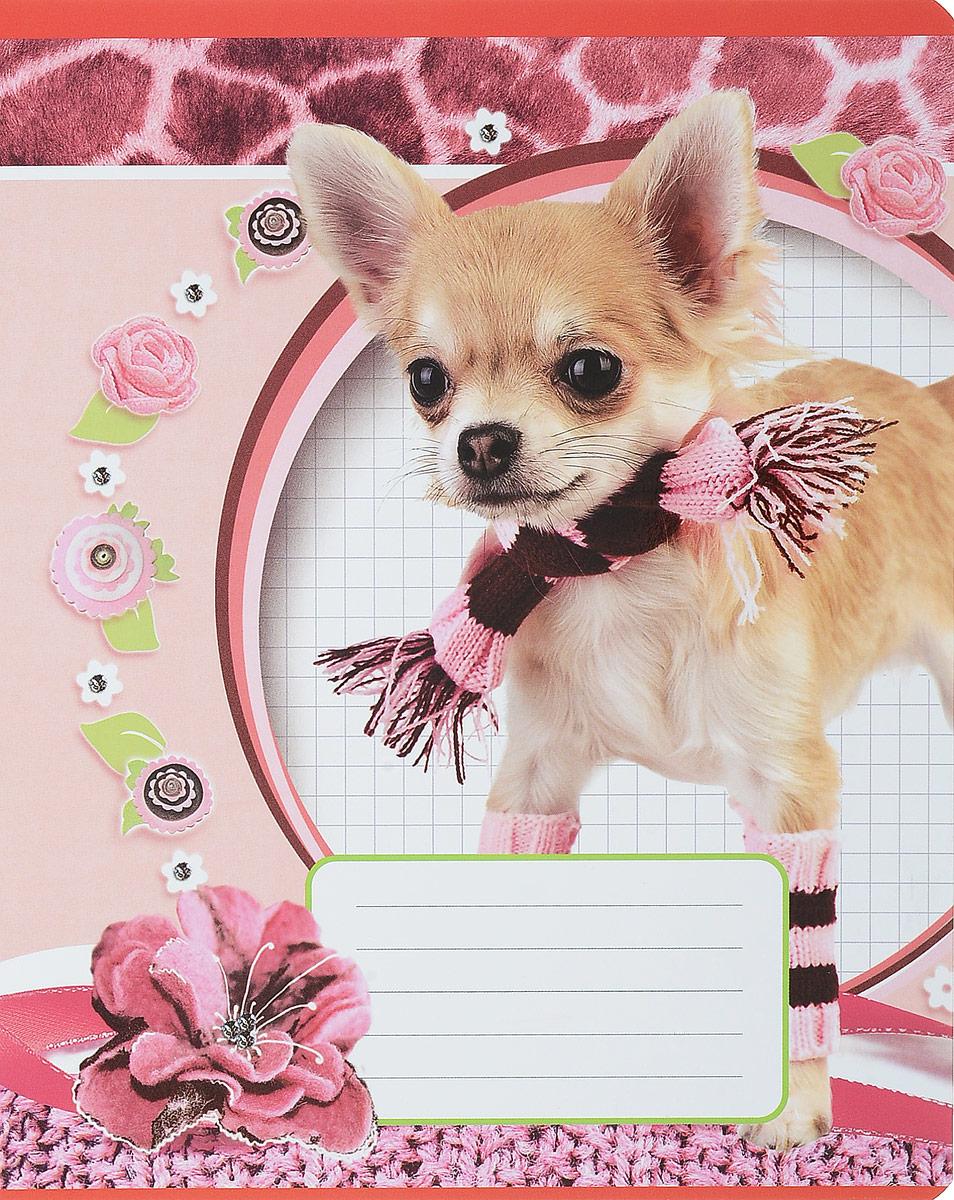 Magic Lines Тетрадь Собака в шарфе 12 листов в линейку72523WDТетрадь Magic Lines Собака в шарфе с красочным дизайном предназначена для младших школьников.Обложка тетради выполнена из картона с закругленными углами. На обратной стороне обложки имеется русский и английский алфавит.Внутренний блок тетради состоит из 12 листов белой бумаги на металлических скрепках, разлинованных в линейку с красными полями.