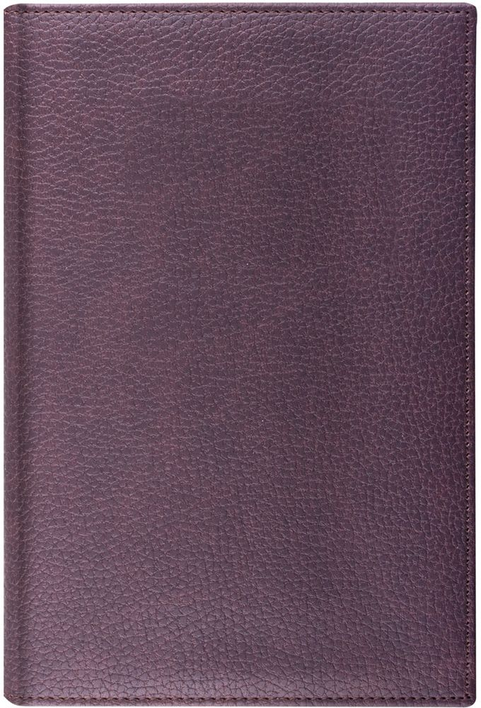 Brauberg Ежедневник Favorite 160 листов цвет коричневый формат A572523WDЕжедневник выполнен в классическом стиле. Обложка имеет ярко выраженную текстуру под кожу, приятную на ощупь. Достойный выбор делового человека.