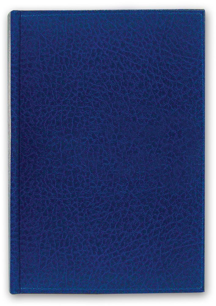 Brauberg Ежедневник Profile недатированный 160 листов цвет синий формат A5730396Недатированный ежедневник Brauberg Profile имеет приятный на ощупь рельефный материал поверхности, имитирующей фактурную кожу. Станет экономичным решением для деловых людей.Все планы и записи всегда будут у вас перед глазами, что позволит легко ориентироваться в графике дел, событий и встреч.