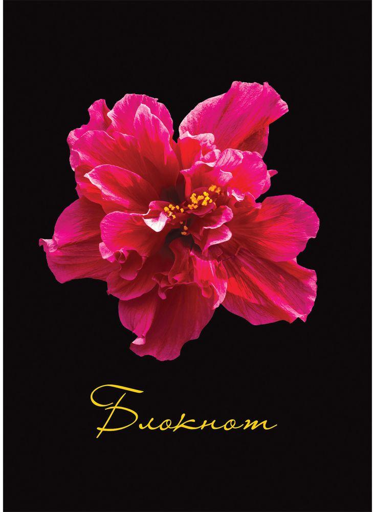 Staff Блокнот Красный цветок 80 листов формат A6