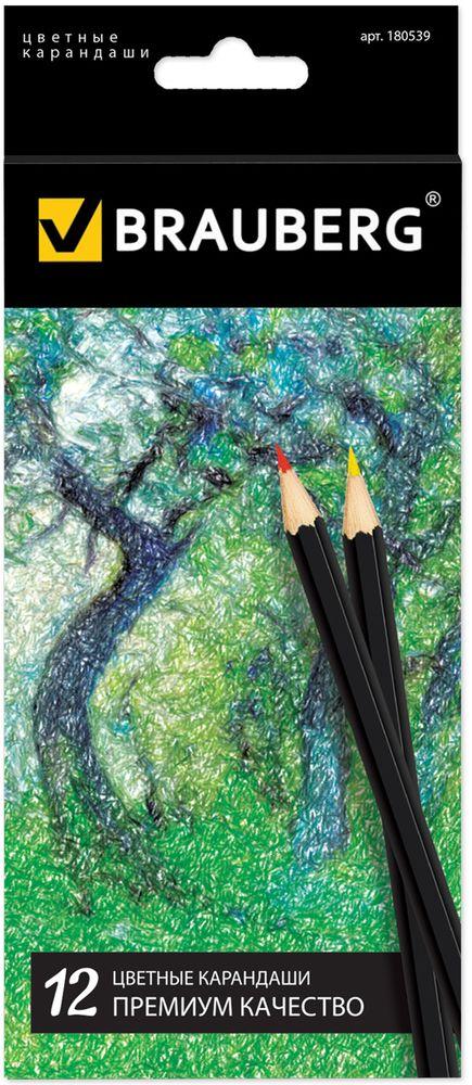 Brauberg Набор цветных карандашей Artist Line 12 цветов180539В набор Brauberg Artist Line входят 12 цветных карандашей премиум качества, изготовленных из древесины. Карандаши имеют шестигранный корпус. Специальная рецептура грифеля позволяет карандашам мягко скользить по бумаге, оставляя насыщенную цветовую линию. Используемая при производстве высокосортная древесина бережет грифель от поломки.Легко и экономично затачиваются.