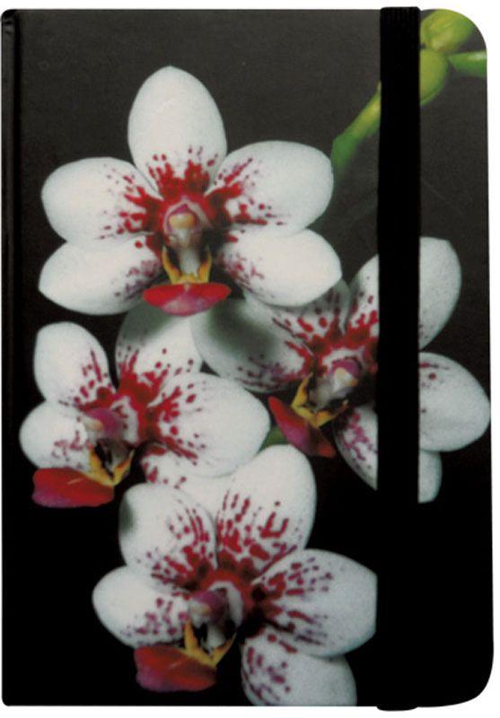 Brauberg Блокнот Цветы 80 листов в клетку 125743232186Блокнот Brauberg с изображением прекрасной орхидеи - это символ любви, элегантности и совершенства. Резинка-фиксатор не позволит блокноту открыться в сумочке или портфеле. Блокнот содержит 80 листов кремовой бумаги формата А7 с разметкой в клетку.