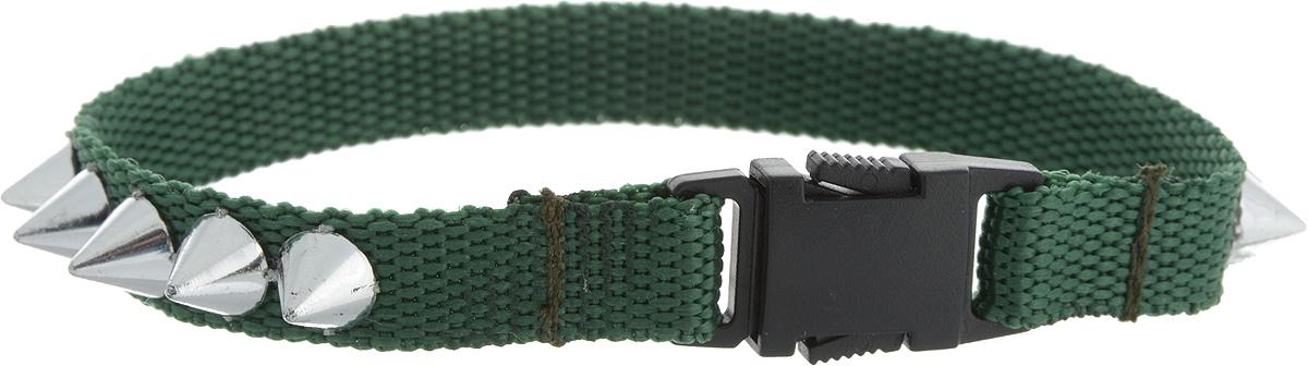 Ошейник для животных GLG Рокер, цвет: зеленый, размер 1 х 22 см12171996Ошейник для животных GLG Солнечный зайчик изготовлен из нейлона и высококачественного пластика. Сверхпрочные нити делают ошейник надежным и долговечным. Ошейник оформлен декоративнымиэлементами.Длина ошейника: 24,5 см. Ширина ошейника: 1 см.