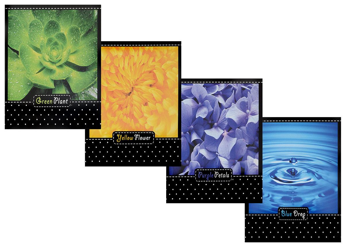 Action! Набор тетрадей Цвета природы 96 листов в клетку 4 шт72523WDНабор тетрадей Action! Цвета природы прекрасно подойдетдля учащихся средних и старших классов. Внутренний блок каждой тетради состоит из 96 листов белой бумаги. Страницы размечены стандартной линовкой в голубую клетку и дополнены полями.Набор состоит из 4 тетрадей с оригинальными изображениями.