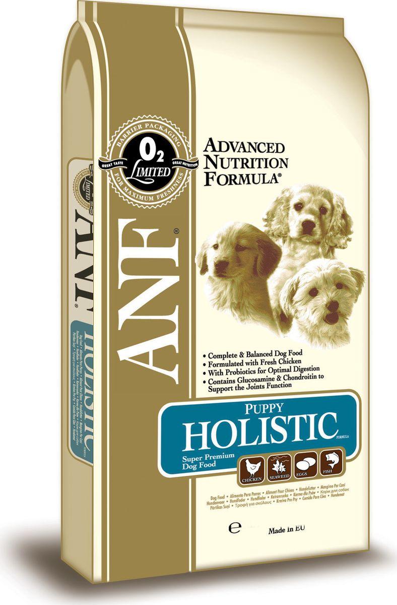 Сухой корм ANF Дог Паппи Холистик, для щенков до 12 месяцев, 1 кг0120710Исследования данного корма, проведенные с применением методов Американской ассоциации официального контроля за качеством пищевой продукции (AAFCO) подтверждают, что ANF Puppy Holistic Formula обеспечивает полноценное и сбалансированное питание, необходимое для роста щенков. Отличный вкус для щенков, позволяющий обеспечить их всем необходимым. Специально подобранный состав для здоровья суставов (хондроитин сульфат, глюкозамин и метилсульфонилметан). Корм содержит пробиотик (полезная кишечная бактерия) для улучшения процесса пищеварения. В состав рациона добавлено свежее мясо курицы.СОСТАВ:мука из мяса курицы (24%), дробленый коричневый рис, дробленый белый рис, мясо курицы (8%), куриный жир (содержащий консерванты из токоферолов), свекловичный жом, овес,рыбная мука (1%), яичный порошок (1%), льняное семя (мин.1%), лецитин, рыбий жир, соус из куриной печени, карбонат кальция, мононатрийфосфат, хлорид калия, хлорид натрия, морские водоросли (мин.0,2%), холинхлорид, смесь токоферола (витамина Е) (альфа-токоферола ацетат),аскорбил монофосфат, экстракт Yucca Schidigera, глюкозамин (340 мг/кг), метилсульфонилметан, сульфат железа, сульфат цинка, хондроитин сульфат, сульфат марганца, сульфат меди, смесь витамина B12, смесь витамина А (ретинилацетат), витамин РР, смесь селенита натрия, смесь витамина D3 (холекальциферол), смесь витамина Н (биотин), пантотенат кальция, витамин В1 (тиамин мононитрат), смесь витамина В2 (рибофлавин), витамин В6 (пиридоксина гидрохлорид), йодат кальция, фолиевая кислота пробиотик (Enterococcus faecium). ГАРАНТИРОВАННЫЙ СОСТАВ: Сырой белок - 28,00% Сырой жир - 18,00% Сырая клетчатка - 3,00% Сырая зола - 9,5% Влажность - 8,00% Кальций (Ca) - 1,83% Фосфор (P) - 1,22% Жирные кислоты Омега-6 - 2,77% Жирные кислоты Омега-3 - 0,86% Глюкозамин - 340 мг/кг Хондроитин сульфат - 120 мг/кг Метилсульфонилметан - 170 мг/кг Витамин А - 27,535 МЕ/кг Витамин D3 - 2,163 МЕ/кг Витамин Е - 197 