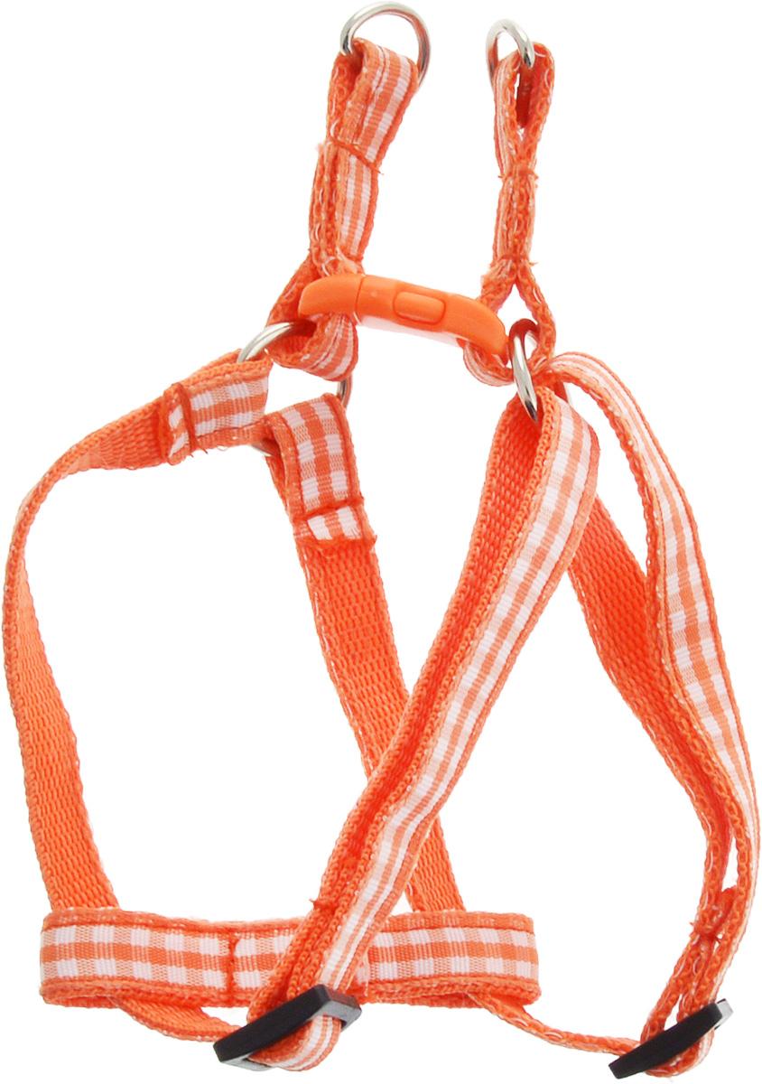 Шлейка для собак GLG Клетка, цвет: оранжевый, обхват шеи 25 см, обхват груди 40 см0120710Шлейка для собак Каскад Классика, изготовленная из высококачественного нейлона, подходит для собак малых и средних размеров. Крепкие металлические и пластиковые элементы делают ее надежной и долговечной. Изделие оснащено светоотражающими полосами.Шлейка - это альтернатива ошейнику. Правильно подобранная шлейка не стесняет движения питомца, не натирает кожу, поэтому животное чувствует себя в ней уверенно и комфортно. Изделие отличается высоким качеством, удобством и универсальностью.Размер регулируется при помощи пряжки.Обхват шеи: 20-30 см. Обхват груди: 25-40 см.Ширина шлейки: 1,5 см.