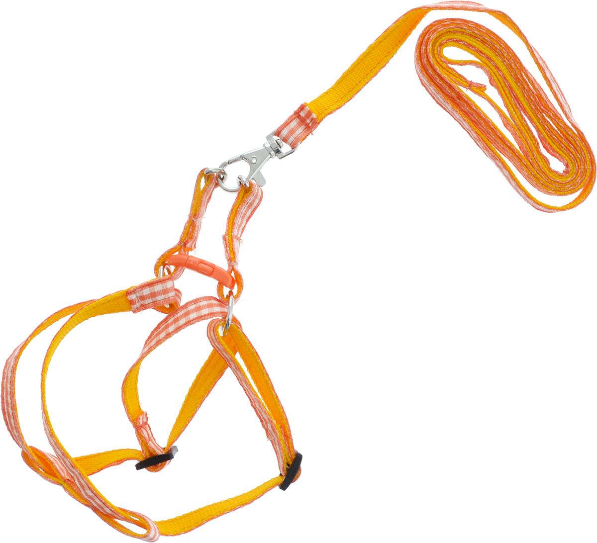 Комплект для собак GLG Клетка: шлейка, поводок, цвет: оранжевый, 2 предметаAMG0815-18-36Комплект для собак GLG Клетка изготовлена из высококачественного нейлона, подходит для собак малых и средних размеров. В комплект входит шлейка и поводок. Крепкие металлические и пластиковые элементы делают ее надежной и долговечной. Изделие оснащено светоотражающими полосами.Шлейка - это альтернатива ошейнику. Правильно подобранная шлейка не стесняет движения питомца, не натирает кожу, поэтому животное чувствует себя в ней уверенно и комфортно. Поводок - необходимый аксессуар для собаки. Ведь в опасных ситуациях именно он способен спасти жизнь вашему любимому питомцу. Изделия отличаются высоким качеством, удобством и универсальностью.Размер регулируется при помощи пряжки. Уважаемые клиенты! Обращаем ваше внимание на цветовой ассортимент материала на внутренней стороне изделия. Поставка осуществляется в зависимости от наличия на складе.