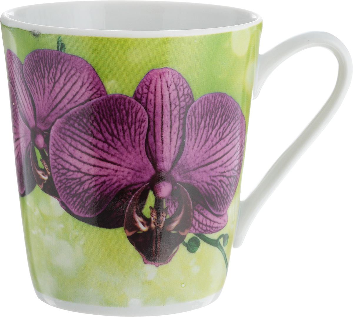 Кружка Классик. Орхидея, цвет: зеленый, фиолетовый, 300 мл3С0493_зеленый, фиолетовая орхидеяКружка Классик. Орхидея изготовлена из высококачественного фарфора. Изделие оформлено красочным цветочным рисунком и покрыто превосходной сверкающей глазурью. Изысканная кружка прекрасно оформит стол к чаепитию и станет его неизменным атрибутом.Диаметр кружки (по верхнему краю): 8,5 см.Высота стенок: 9,5 см.
