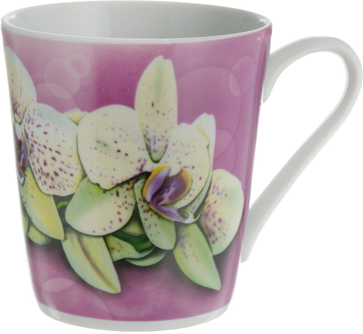 Кружка Классик. Орхидея, цвет: сиреневый, белый, 300 мл115510Кружка Классик. Орхидея изготовлена из высококачественного фарфора. Изделие оформлено красочным рисунком и покрыто превосходной сверкающей глазурью. Изысканная кружка прекрасно оформит стол к чаепитию и станет его неизменным атрибутом.Диаметр кружки (по верхнему краю): 8,5 см.Высота кружки: 9,5 см.