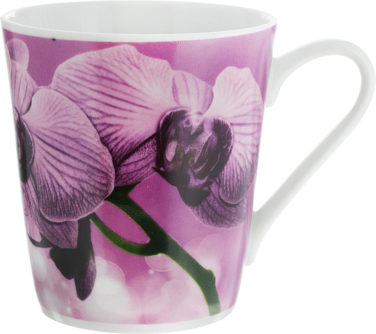 Кружка Классик. Орхидея, цвет: сиреневый, 300 мл115510Кружка Классик. Орхидея изготовлена из высококачественного фарфора. Изделие оформлено красочным рисунком и покрыто превосходной сверкающей глазурью. Изысканная кружка прекрасно оформит стол к чаепитию и станет его неизменным атрибутом.Диаметр кружки (по верхнему краю): 8,5 см.Высота кружки: 9,5 см.