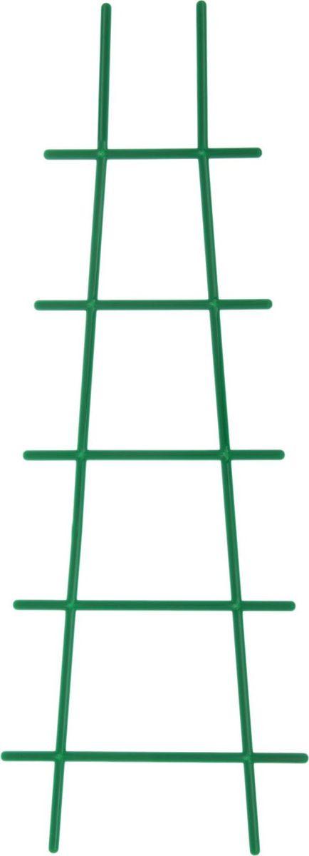 Опора для растений InGreen, цвет: зеленый, 18 х 50 см1637024Опора для комнатных растений InGreen зеленого цвета - прекрасный выбор для комфортного отдыха и эффективного труда на даче, который будет радовать вас достойным качеством.