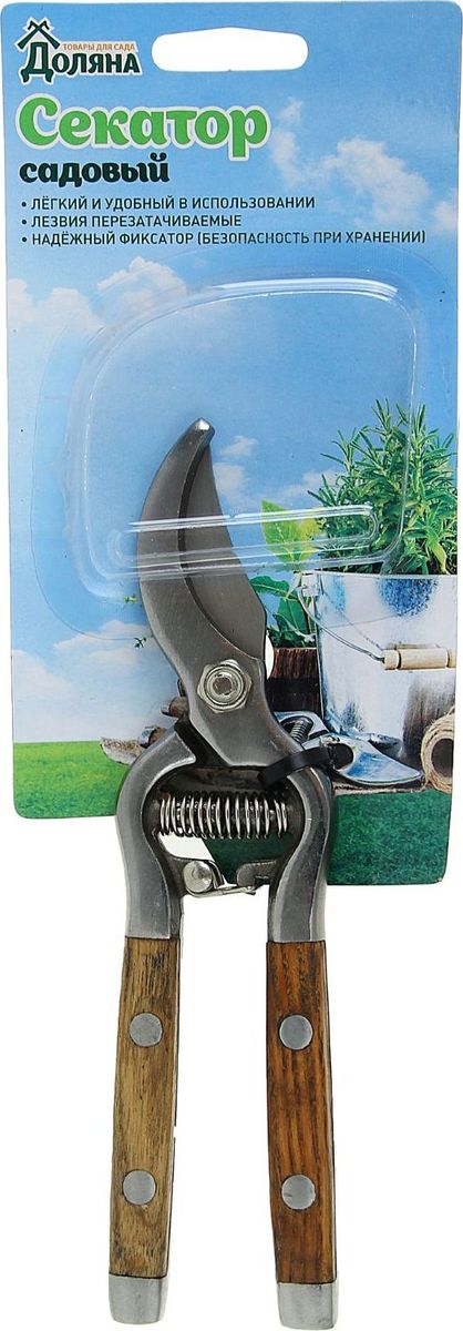 Секатор Доляна, 23 х 9 х 1,7 см391602Секатор Доляна предназначен для прореживания веток и формирования кроны деревьев и кустарников. Также используется при сборе винограда или при удалении усиков у клубники.Секатор выполнен из прочного металла, а рукоятка из дерева. Специальный замок накорпусе плотно фиксирует инструмент в закрытом состоянии, что обеспечивает компактное и безопасное хранение. Размер: 23 х 9 х 1,7 см.