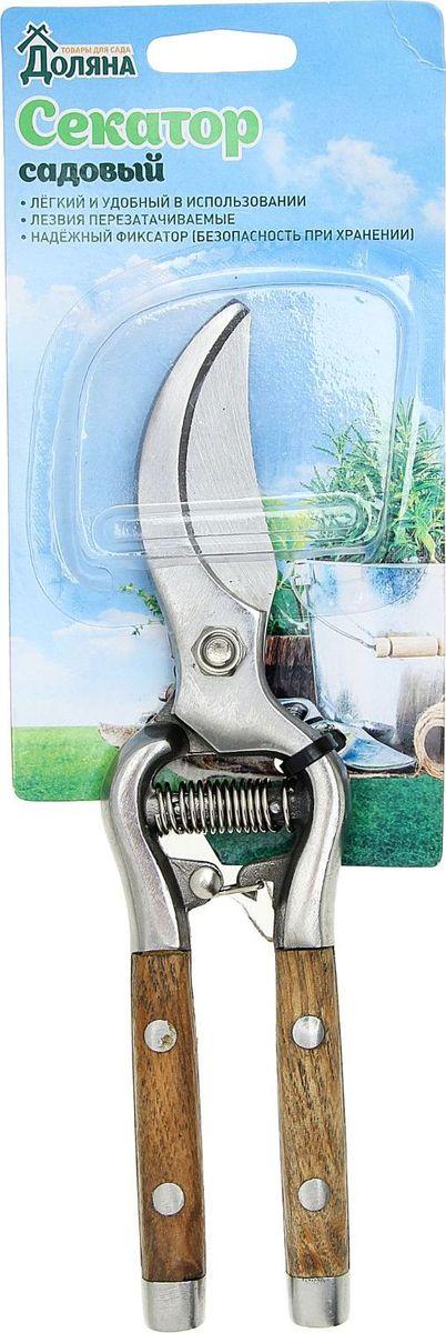 Секатор Доляна, 26 х 5,5 х 2 см1762408Инструмент Доляна предназначен для удаления сучков и веток деревьев. Материал: металл, дерево.
