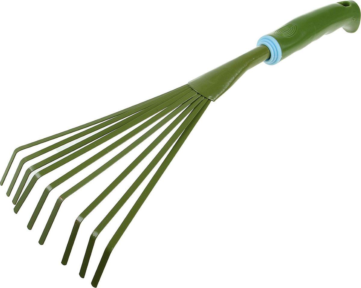 Грабли веерные Доляна, цвет: зеленый, голубой, длина 37 см531-402Эти небольшие грабли станут дополнением основного набора садовых инструментов.Они предназначены для сбора мусора, опавших листьев и лепестков. С помощью такого приспособления удобно работать на маленьких грядках, клумбах, между растениями и в других местах с ограниченным доступом. Имеют пластиковую рукоятку.Внимание!Изделие не предназначено для рыхления земли.
