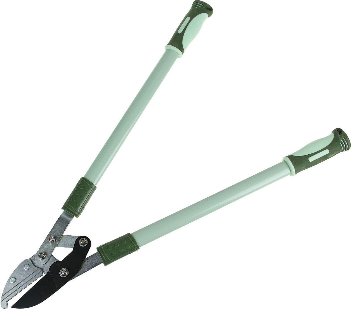 Секатор Доляна, с наковальней, 74 х 30 х 3 см531-402Секатор предназначен для удаления сучков и веток деревьев. Материал: металл, пластик. Размер лезвия: 7 см, общая длина: 74 см.