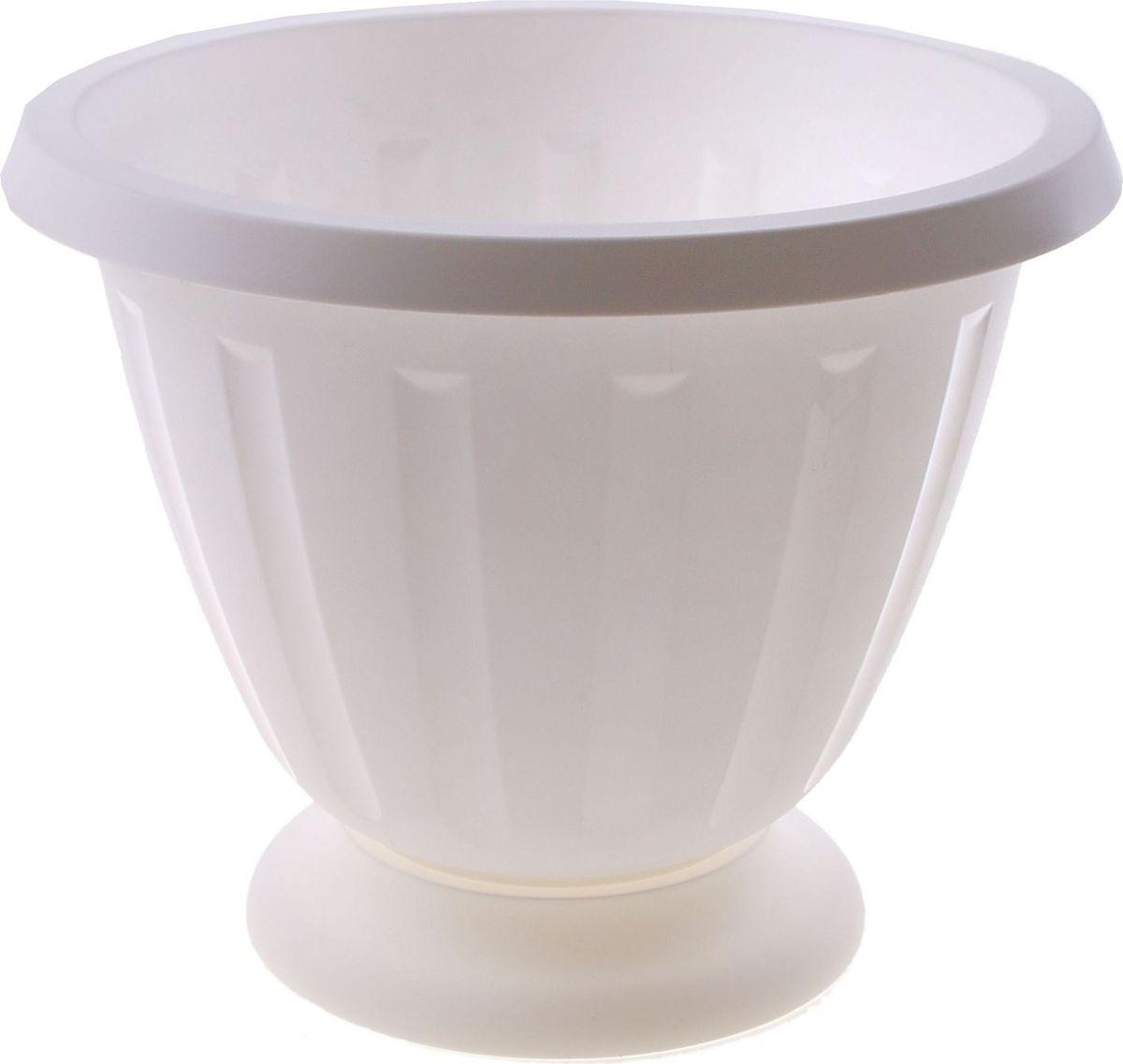 Вазон Альтернатива Пальмира, цвет: белый, 10 л531-105Любой, даже самый современный и продуманный интерьер будет не завершённым без растений. Они не только очищают воздух и насыщают его кислородом, но и заметно украшают окружающее пространство. Такому полезному члену семьи просто необходимо красивое и функциональное кашпо, оригинальный горшок или необычная ваза! Мы предлагаем - Вазон 10 л Пальмира, цвет белый! Оптимальный выбор материала пластмасса! Почему мы так считаем? Малый вес. С лёгкостью переносите горшки и кашпо с места на место, ставьте их на столики или полки, подвешивайте под потолок, не беспокоясь о нагрузке. Простота ухода. Пластиковые изделия не нуждаются в специальных условиях хранения. Их легко чистить достаточно просто сполоснуть тёплой водой. Никаких царапин. Пластиковые кашпо не царапают и не загрязняют поверхности, на которых стоят. Пластик дольше хранит влагу, а значит растение реже нуждается в поливе. Пластмасса не пропускает воздух корневой системе растения не грозят резкие перепады температур. Огромный выбор форм, декора и расцветок вы без труда подберёте что-то, что идеально впишется в уже существующий интерьер. Соблюдая нехитрые правила ухода, вы можете заметно продлить срок службы горшков, вазонов и кашпо из пластика: всегда учитывайте размер кроны и корневой системы растения (при разрастании большое растение способно повредить маленький горшок)берегите изделие от воздействия прямых солнечных лучей, чтобы кашпо и горшки не выцветалидержите кашпо и горшки из пластика подальше от нагревающихся поверхностей. Создавайте прекрасные цветочные композиции, выращивайте рассаду или необычные растения, а низкие цены позволят вам не ограничивать себя в выборе.