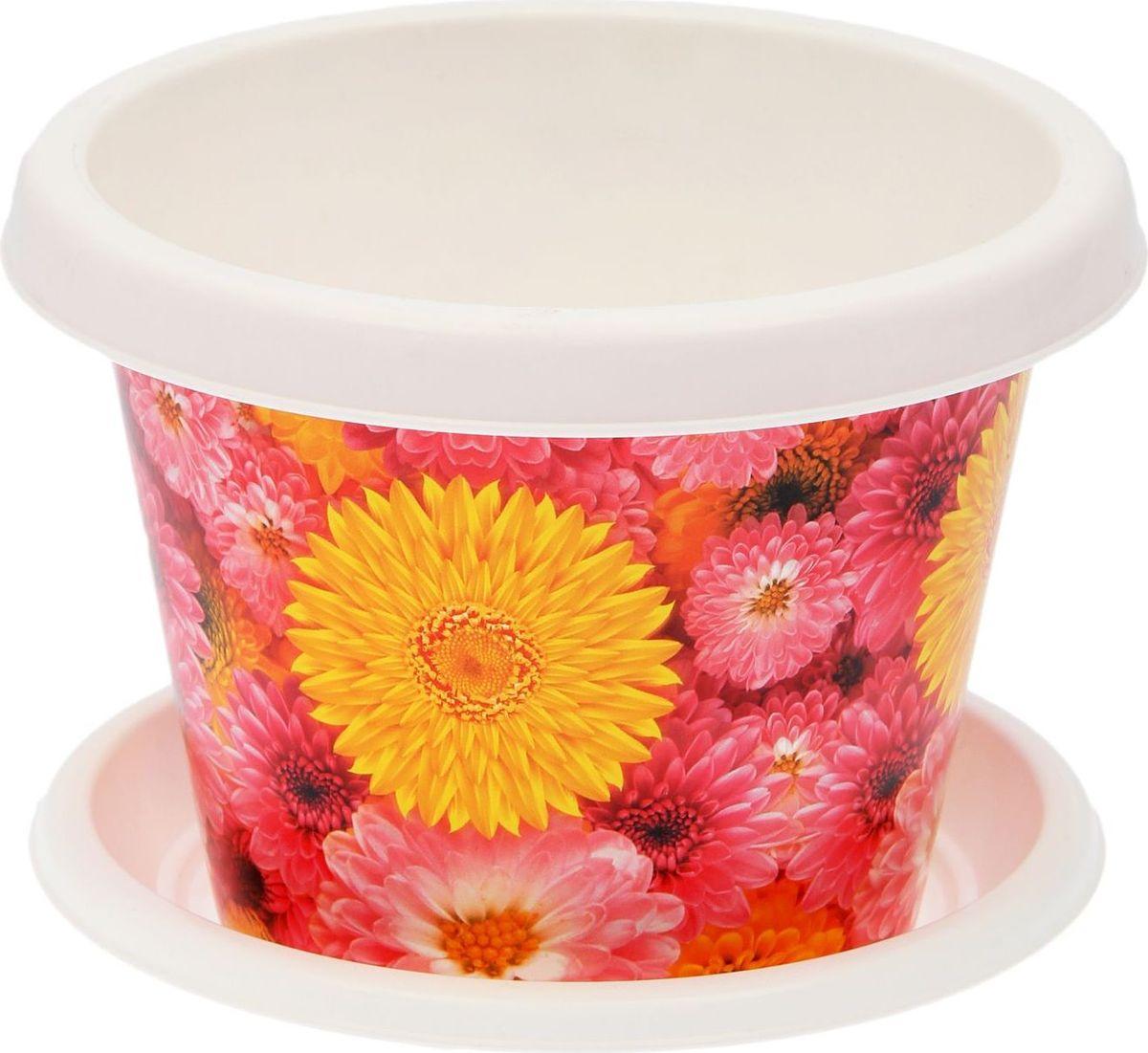 Кашпо Violet Хризантемы, с поддоном, 4 л531-401Классическое кашпо с поддоном, выполненное из пластика, прекрасно подойдет для выращивания трав и цветов. Объём кашпо: 4 л.