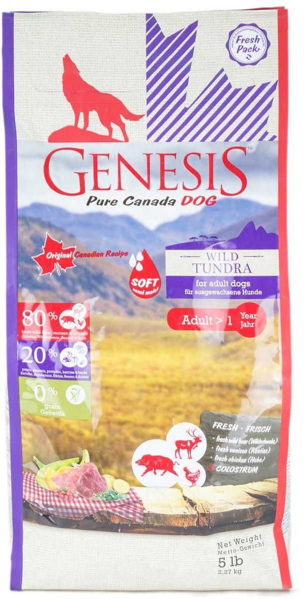 Корм сухой Genesis Pure Canada Wild Tundra Sof  для взрослых собак, с мясом дикого кабана, северного оленя и курицы, 2,27 кг5563015Полнорационный беззерновой корм класса холистик с повышенной влажностью для взрослых собак всех пород, предпочитающих более нежные гранулы, с мясом дикого кабана, северного оленя и курицы.Ингредиенты: Свежая курица (мин. 55 %), белок из мяса кур (дегидратированный, мин. 12 %), свежее мясо дикого кабана (мин. 6 %), кормовые бананы (плантан) (сушёные, мин. 4 %), картофельная мука (мин. 4 %), свежее мясо северного оленя (мин. 2 %), тыква (высушенная, мин. 2 %), нут (сушёный), чечевица (сушеная), гидролизованный протеин, семена подорожника, молозиво (мин. 0,3 %), клюква (сушёная), черника (сушёная, мин. 0,1 %), экстракт зеленой мидии (сушёные, мин. 0,1 %), дикая крапива (сушёная), листья ежевики (сушёные), тысячелистник (сушёный), фенхель (сушёный), тмин (сушёный), цветки ромашки (сушёные), омела (сушёная), корень горечавки (сушёный, мин. 0,02 %), золототысячник обыкновенный (сушёный, мин. 0,02 %).