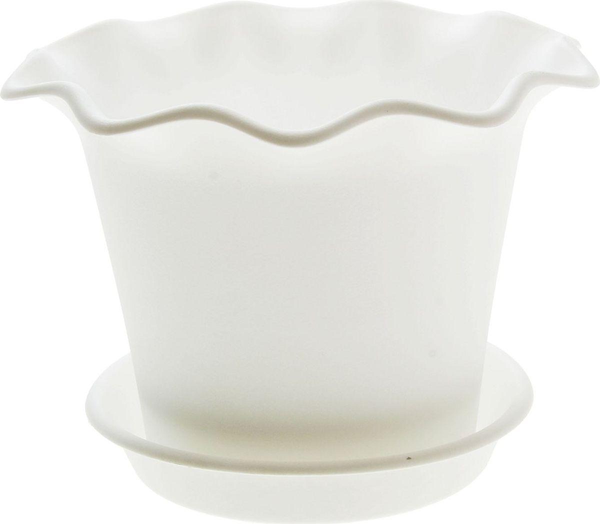 Горшок для цветов InGreen Бали, с поддоном, цвет: белый, диаметр 16 смZ-0307Горшок InGreen Бали выполнен из высококачественного полипропилена (пластика) и предназначен для выращивания цветов, растений и трав. Снабжен поддоном для стока воды.Такой горшок порадует вас функциональностью, а благодаря лаконичному дизайну впишется в любой интерьер помещения.Диаметр горшка (по верхнему краю): 16 см. Высота горшка: 12,3 см.