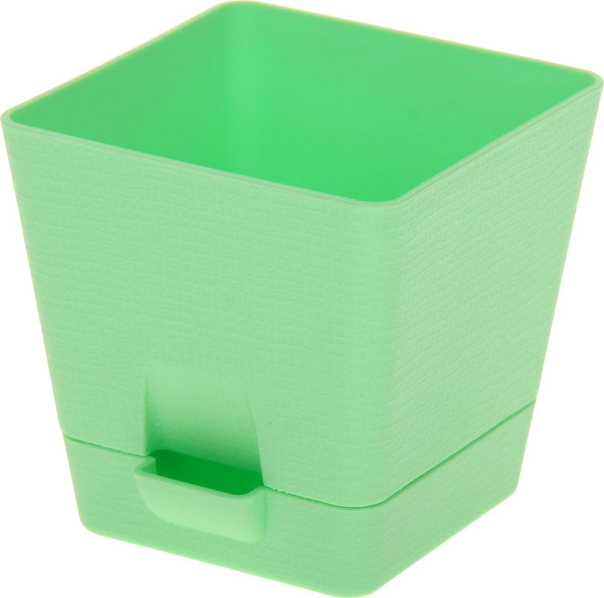 Горшок для цветов Tek.A.Тek Le Parterre, с системой прикорневого полива, цвет: зеленый, 1 л531-402Любой, даже самый современный и продуманный интерьер будет не завершённым без растений. Они не только очищают воздух и насыщают его кислородом, но и заметно украшают окружающее пространство. Такому полезному &laquo члену семьи&raquoпросто необходимо красивое и функциональное кашпо, оригинальный горшок или необычная ваза! Мы предлагаем - Горшок для цветов с поддоном 1 л Le Parterre, d=12 см, квадратный, цвет зеленый!Оптимальный выбор материала &mdash &nbsp пластмасса! Почему мы так считаем? Малый вес. С лёгкостью переносите горшки и кашпо с места на место, ставьте их на столики или полки, подвешивайте под потолок, не беспокоясь о нагрузке. Простота ухода. Пластиковые изделия не нуждаются в специальных условиях хранения. Их&nbsp легко чистить &mdashдостаточно просто сполоснуть тёплой водой. Никаких царапин. Пластиковые кашпо не царапают и не загрязняют поверхности, на которых стоят. Пластик дольше хранит влагу, а значит &mdashрастение реже нуждается в поливе. Пластмасса не пропускает воздух &mdashкорневой системе растения не грозят резкие перепады температур. Огромный выбор форм, декора и расцветок &mdashвы без труда подберёте что-то, что идеально впишется в уже существующий интерьер.Соблюдая нехитрые правила ухода, вы можете заметно продлить срок службы горшков, вазонов и кашпо из пластика: всегда учитывайте размер кроны и корневой системы растения (при разрастании большое растение способно повредить маленький горшок)берегите изделие от воздействия прямых солнечных лучей, чтобы кашпо и горшки не выцветалидержите кашпо и горшки из пластика подальше от нагревающихся поверхностей.Создавайте прекрасные цветочные композиции, выращивайте рассаду или необычные растения, а низкие цены позволят вам не ограничивать себя в выборе.