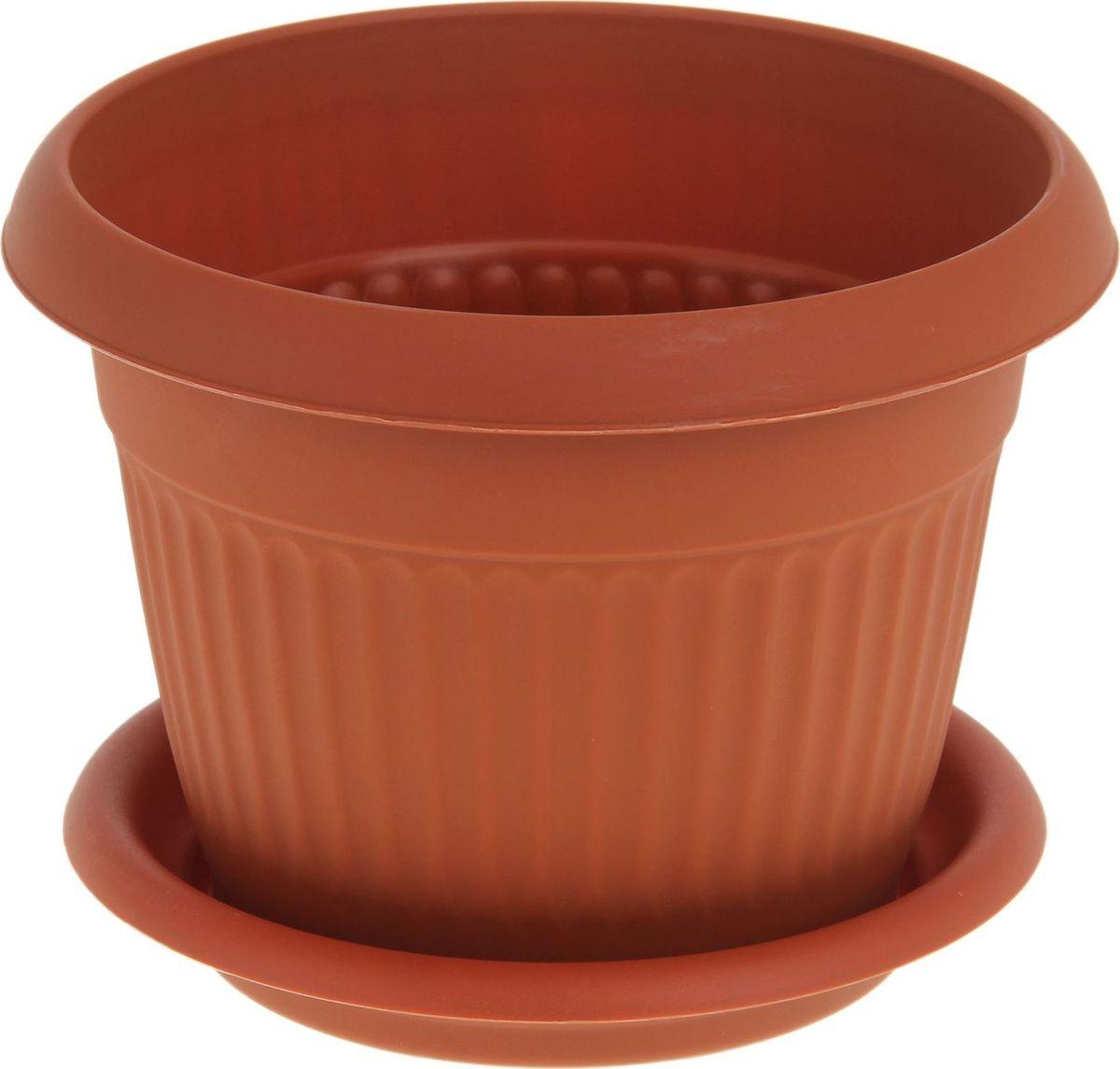 Кашпо Idea Ливия, с поддоном, цвет: терракотовый, 4,6 л41624Кашпо Idea Ливия изготовлено из прочного полипропилена (пластика) и предназначено для выращивания растений, цветов и трав в домашних условиях. Круглый поддон обеспечивает сток воды. Такое кашпо порадует вас функциональностью, а благодаря лаконичному дизайну впишется в любой интерьер помещения. Диаметр кашпо по верхнему краю: 24 см. Объем кашпо: 4,6 л.