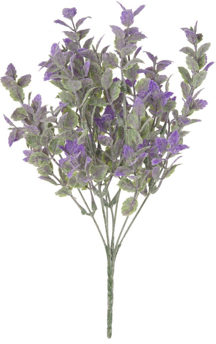 Цветы искусственные Engard Мелкоцвет, цвет: фиолетовый, 30 см531-105Искусственные цветы Engard - это популярное дизайнерское решение для создания природного колорита и индивидуальности в интерьере. Декоративный мелкоцвет фиолетового цвета выполнен из высококачественного материала передающего неповторимую естественность и ничем не уступает живым цветам. Необычные размеры и броские формы соцветий отлично подходят для создания эксклюзивных композиций.Не требует постоянного ухода. Размер: 30 см.