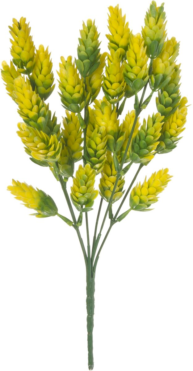 Цветы искусственные Engard Хмель, цвет: зеленый, 30 см531-402Хмель желтого цвета - необычный яркий цветок для современного декора который позволит создать цветочную композицию и станет украшением любого пространства. Данный цветок выполнен из высококачественного материала передающего неповторимую естественность и является достоной альтернативой живым цветам. Не требует постоянного ухода.Размер: 30 см.