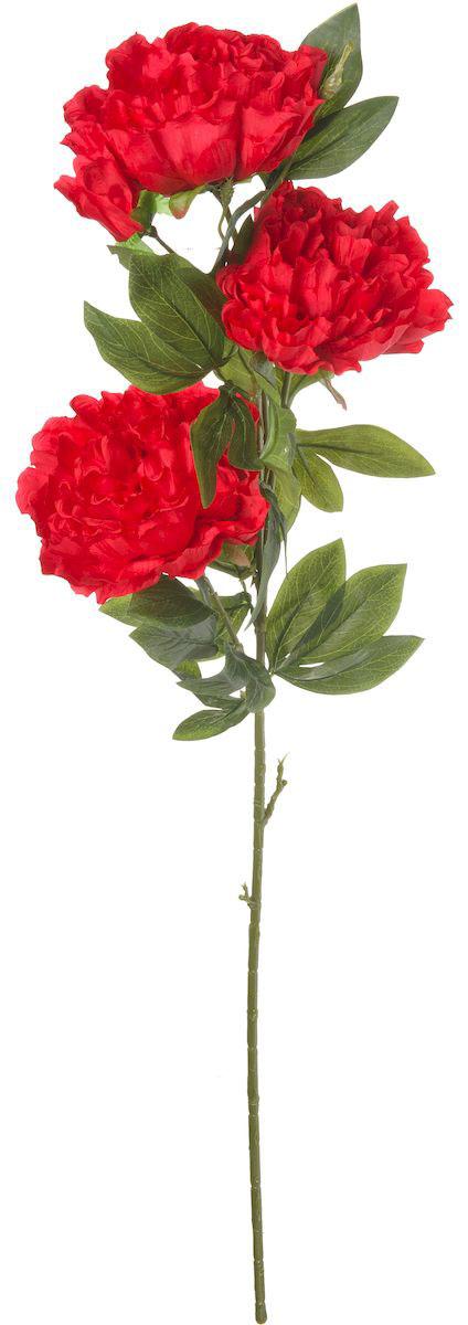 Цветы искусственные Engard Пион, цвет: бордовый, 105 см1004900000360Искусственный пион бордового цвета выполнен из высококачественного материала передающего неповторимую естественность и является достойной альтернативой живым цветам. В интерьере очень часто пионы используют для оформления комнат в восточном стиле, так как этот цветок символизирует крепость семейного очага и искреннюю любовь. Не требует постоянного ухода. Размер: 105 см.