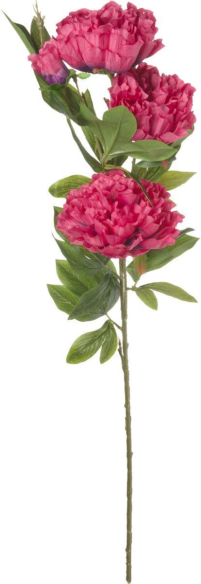 Цветы искусственные Engard Пион, цвет: сиреневый, 105 см1092019Искусственный пион сиреневого цвета выполнен из высококачественного материала передающего неповторимую естественность и является достойной альтернативой живым цветам. В интерьере очень часто пионы используют для оформления комнат в восточном стиле, так как этот цветок символизирует крепость семейного очага и искреннюю любовь. Не требует постоянного ухода. Размер: 105 см.
