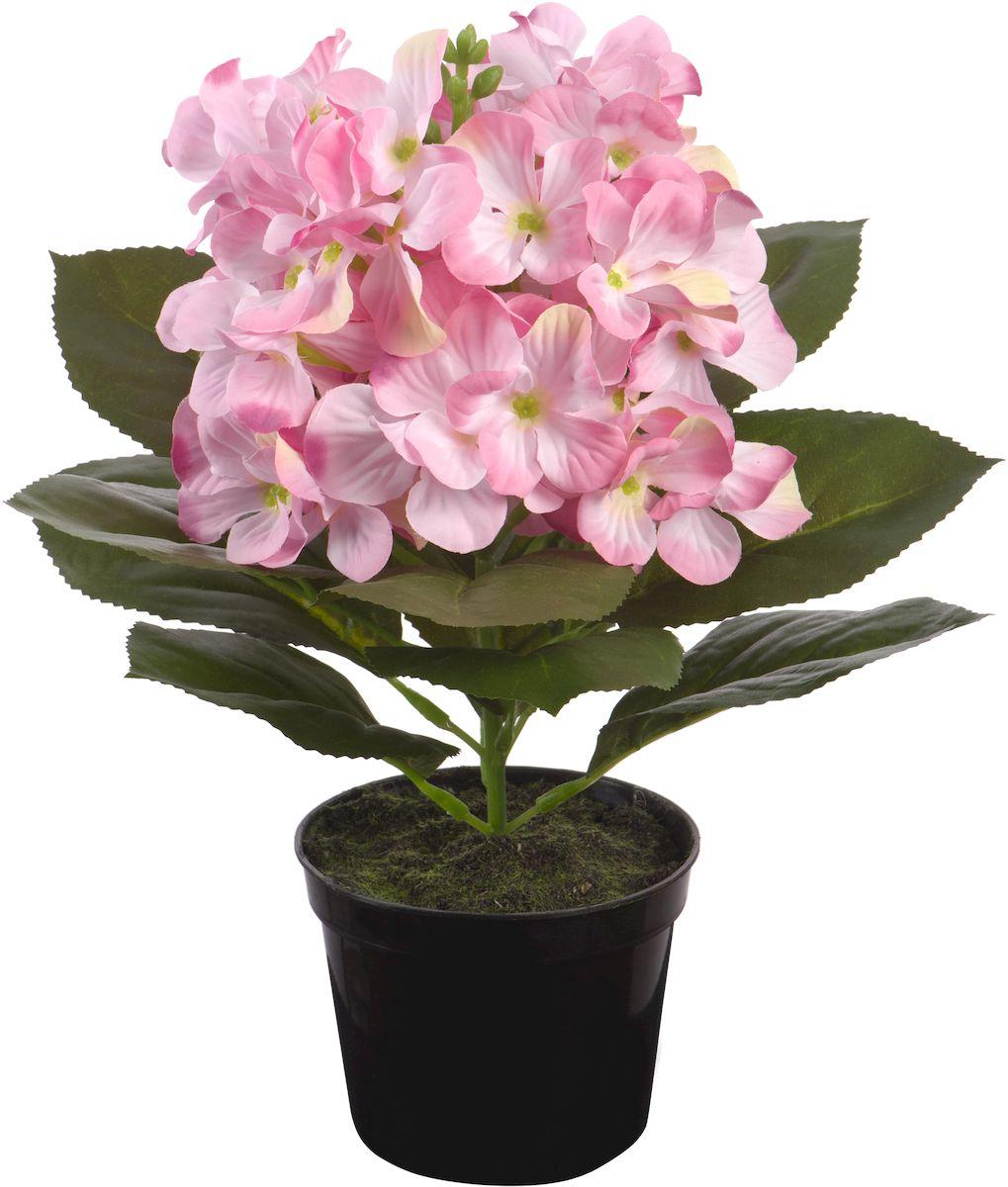 Цветы декоративные Engard Гортензия, в цветочном горшке, 28 см1004900000360Искусственные цветы Engard - это популярное дизайнерское решение для создания природного колорита и гармонии в пространстве. Искусственная гортензия нежно-розового цвета высотой 28 см выполнена из высококачественного материала передающего неповторимую естественность является достойной альтернативой живым цветам. Не требует постоянного ухода.