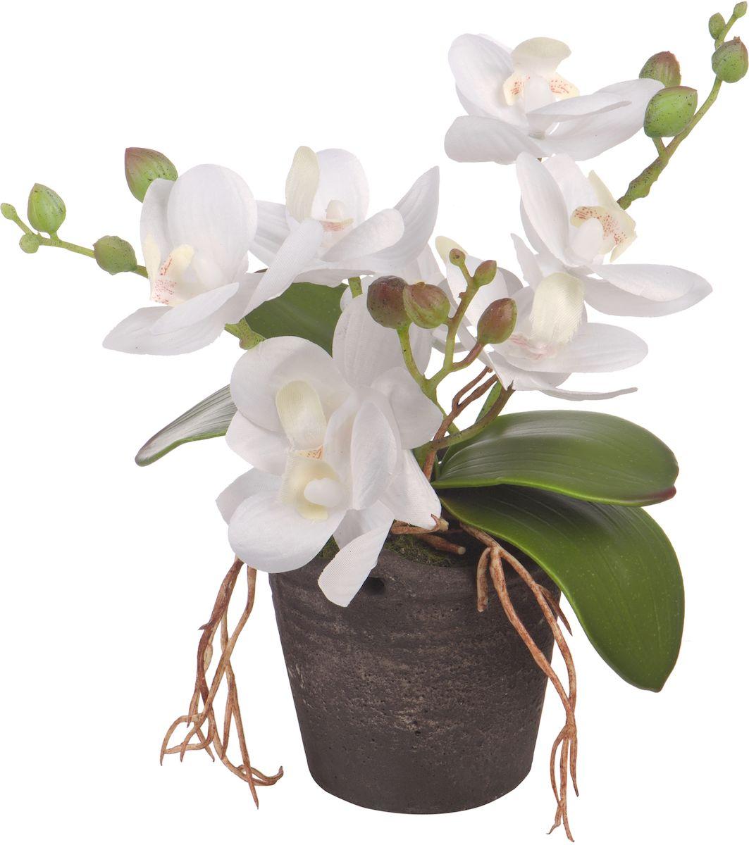 Цветы декоративные Engard Орхидея, в цветочном горшке, 18 смK100Искусственные цветы Engard - это популярное дизайнерское решение для создания природного колорита и гармонии в пространстве. Экзотическая орхидея в винтажном керамическом горшке высотой 18 см выполнена из высококачественного материала передающего неповторимую естественность является достойной альтернативой живым цветам. Не требует постоянного ухода.