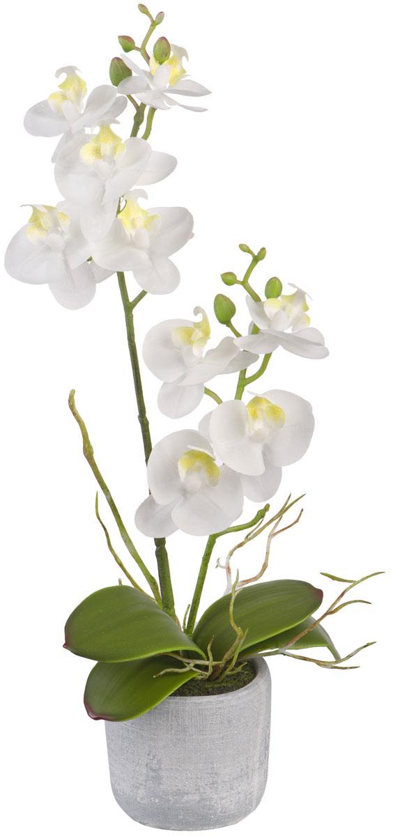 Цветы декоративные Engard Орхидея, в кашпо, 7 х 7 х 34 смK100Искусственные цветы Engard - это популярное дизайнерское решение для создания природного колорита и гармонии в пространстве. Искусственная белая орхидея в керамическом кашпо высотой 36 см выполнена из высококачественного материала передающего неповторимую естественность и является достойной альтернативой живым цветам. Не требует постоянного ухода.
