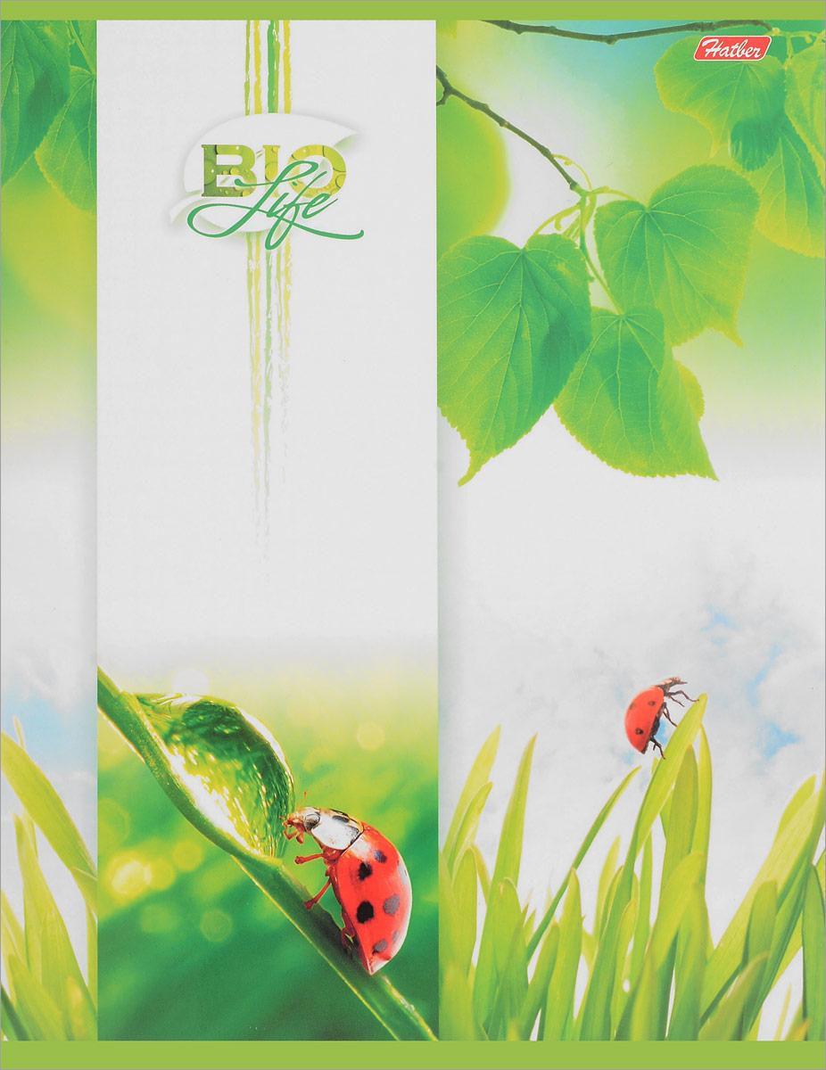 Hatber Тетрадь Bio Life 96 листов в клетку вид 10703415Тетрадь Hatber Bio Life отлично подойдет для занятий как школьнику, так и студенту.Яркая обложка бело-зеленого цвета с изображением божьих коровок, выполненная из плотного мелованного картона, позволит сохранить тетрадь в аккуратном состоянии на протяжении всего времени использования.Внутренний блок тетради, соединенный скрепками, состоит из 96 листов белой бумаги в голубую клетку с полями.