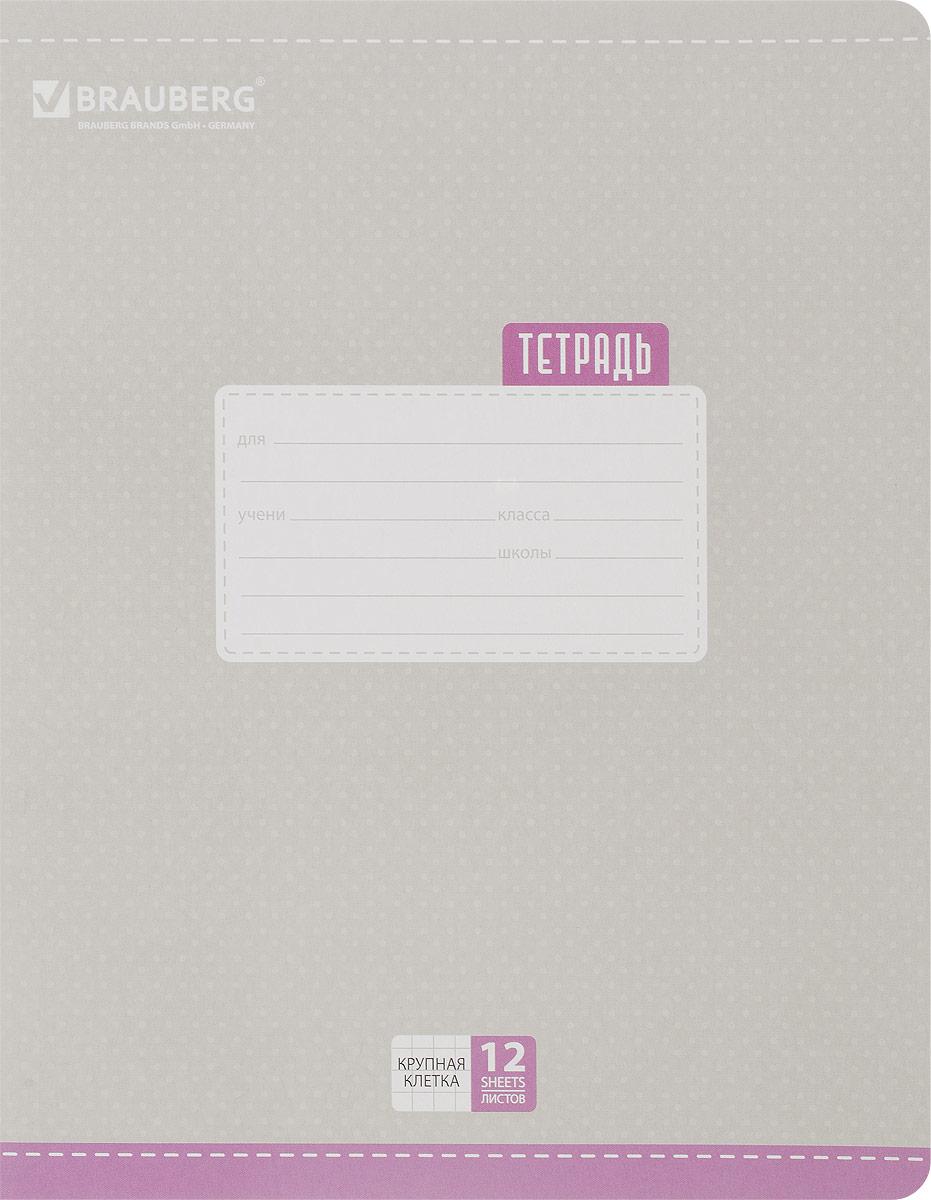 Brauberg Тетрадь Dots 12 листов в крупную клетку цвет серый72523WDОбложка тетради Brauberg Dots с закругленными углами выполнена из плотного картона, что позволит сохранить ее в аккуратном состоянии на протяжении всего времени использования. На задней обложке находятся меры длины, меры объема, меры массы, меры площади и таблица умножения.Внутренний блок тетради, соединенный двумя металлическими скрепками, состоит из 12 листов белой бумаги. Стандартная линовка в крупную клетку голубого цвета дополнена полями.