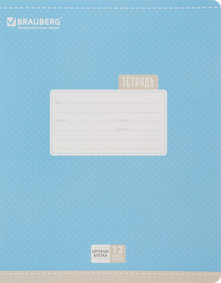 Brauberg Тетрадь Dots 12 листов в крупную клетку цвет голубой730396Обложка тетради Brauberg Dots с закругленными углами выполнена из плотного картона, что позволит сохранить ее в аккуратном состоянии на протяжении всего времени использования. На задней обложке находятся меры длины, меры объема, меры массы, меры площади и таблица умножения.Внутренний блок тетради, соединенный двумя металлическими скрепками, состоит из 12 листов белой бумаги. Стандартная линовка в крупную клетку голубого цвета дополнена полями.