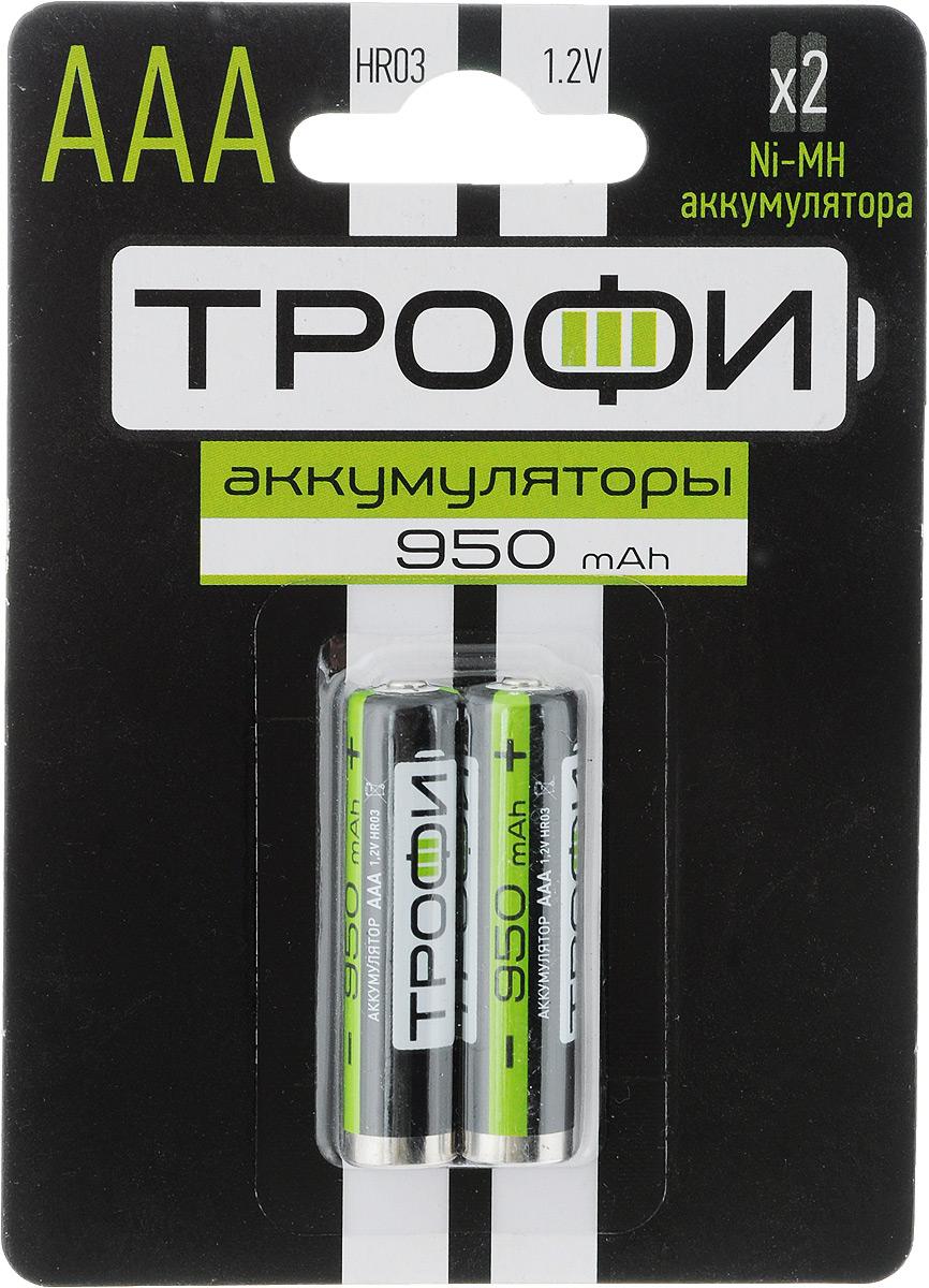 Аккумулятор Трофи, тип AAA (HR03-2BL), 950 мАч, 2 штE300157200Аккумуляторы никель-металлогидридные Трофи оптимально подходят для повседневного питания множества современных бытовых приборов. Батарейки созданы для устройств с высоким потреблением энергии. Аккумуляторы Трофи - современное решение для людей, постоянно нуждающихся в надежном источнике питания различных устройств как в своей профессиональной деятельности, так и в период отдыха. Они идеальны для использования даже в самой требовательной бытовой электронике: цифровые фотоаппараты, фотовспышки, плееры, современные игрушки и прочее. Более того, NiMh аккумуляторы отличаются отсутствием эффекта памяти, что исключает необходимость полного разряда перед каждый циклом восполнения емкости. В комплекте - 2 аккумулятора. Размер аккумулятора: 1 см х 4,3 см.