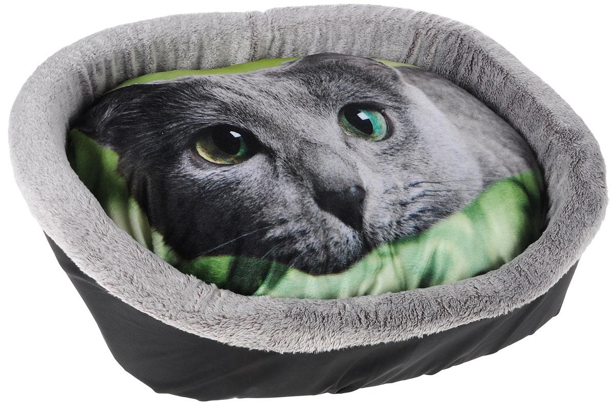 Лежак для животных Грызлик Ам Морда кошки на зеленом фоне, 55 x 47 x 16 смDM-150355-2_коричневыйМягкий и уютный лежак Грызлик Ам Морда кошки на зеленом фоне обязательно понравится вашему питомцу. Он выполнен из плюша, нейлона и искусственного меха. Изделие оформлено оригинальным принтом с изображением кошки.Наполнительвыполнен из мягкого синтепона. Такой материал не теряет своей формы долгое время. Борта и съемная подушка обеспечат вашему любимцу уют.Мягкий лежак станет излюбленным местом вашего питомца, подарит ему спокойный и комфортный сон, а также убережет вашу мебель от многочисленной шерсти.