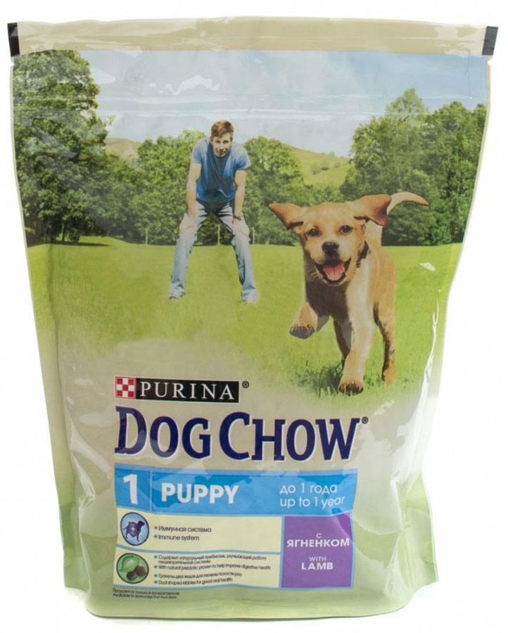 Корм сухой для собак Dog Chow Puppy, 800 г0120710Каждый день жизни щенка полон приключений, требующих больших затрат энергии. Корм PURINA® DOG CHOW® Puppy для щенков – это 100% сбалансированное питание, сочетающее мясо, важнейшие минеральные элементы и витамины, которые помогают щенку расти здоровым, сильным и готовым к новым испытаниям. Этот корм подходит также для взрослых собак мелких пород и собак в период беременности и вскармливания.Уважаемые клиенты!Обращаем ваше внимание на возможные изменения в дизайне упаковки. Качественные характеристики товара остаются неизменными. Поставка осуществляется в зависимости от наличия на складе.